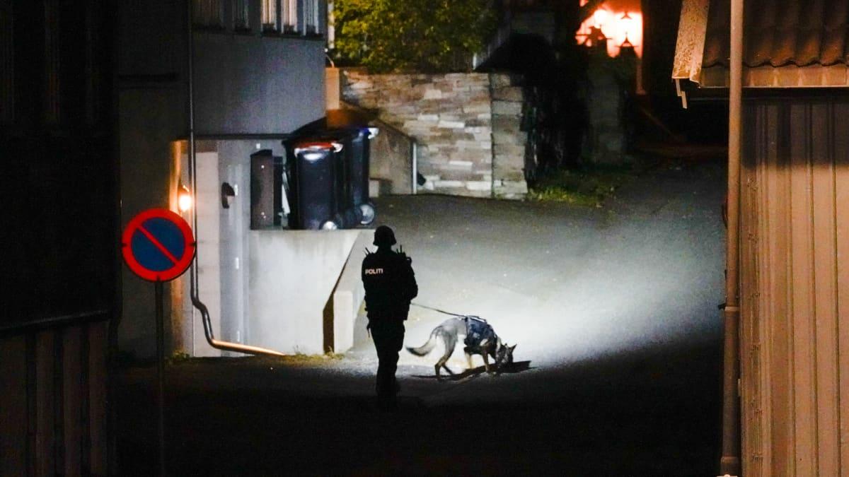 poliisi ja koira tutkivat rikospaikkaa liittyen hyökkäykseen jousella.