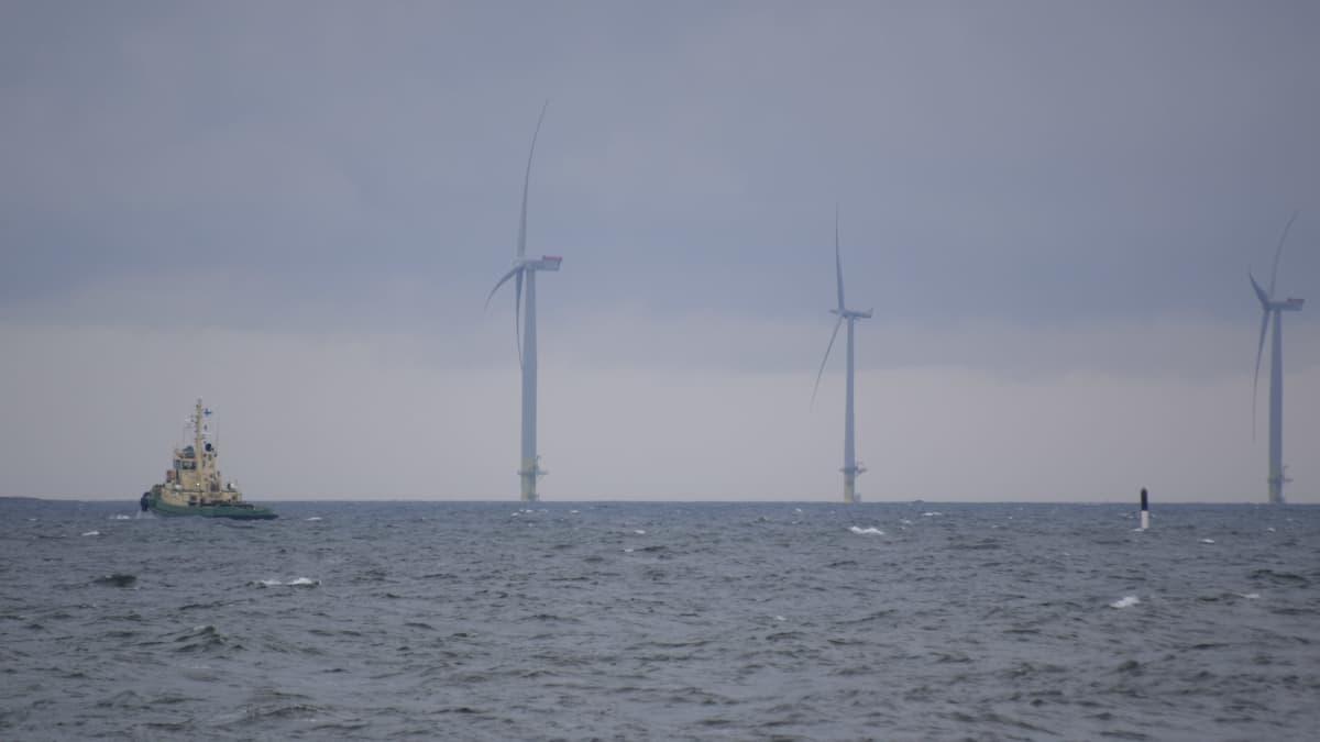 Tahkoluodon merituulivoimapuistoon suunnitellaan useiden kymmenien voimaloiden laajennusta.