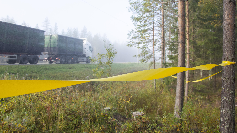 Keltainen hirvinauha näkyy selvästi metsästä käsin, autot ajavat tiellä nauhan toisella puolella.
