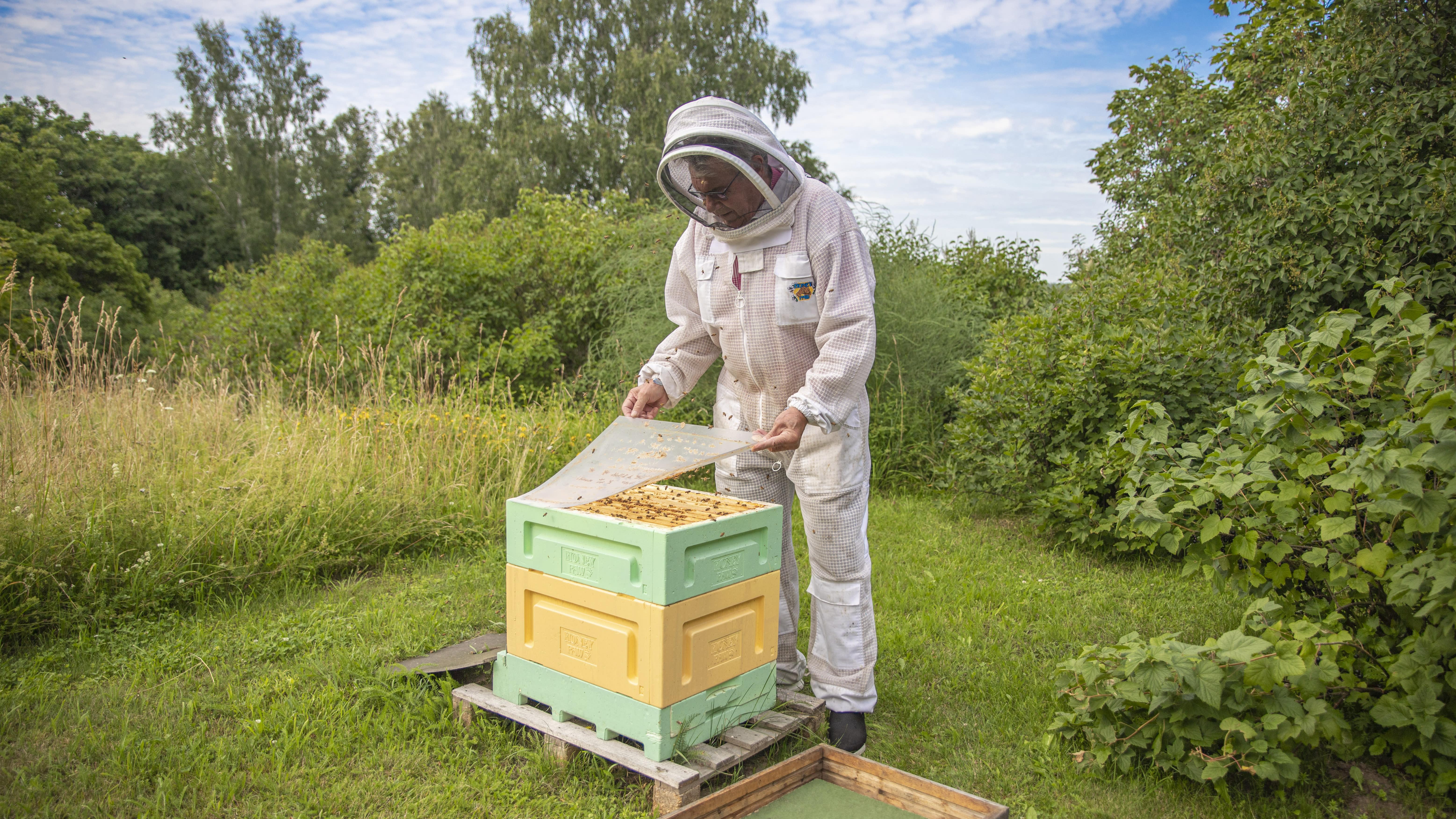 Mehiläistarhaaja Jouko Kolhonen.