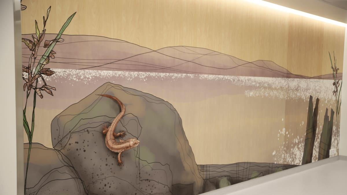 Sairaalan seinällä luontokuva, missä lisko kivellä