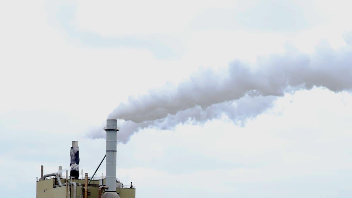 Vaaleanharmaat savuvanat nousevat Stora Enson Veitsiluodon sellutehtaan piipuista. Taustana pilvinen taivas.