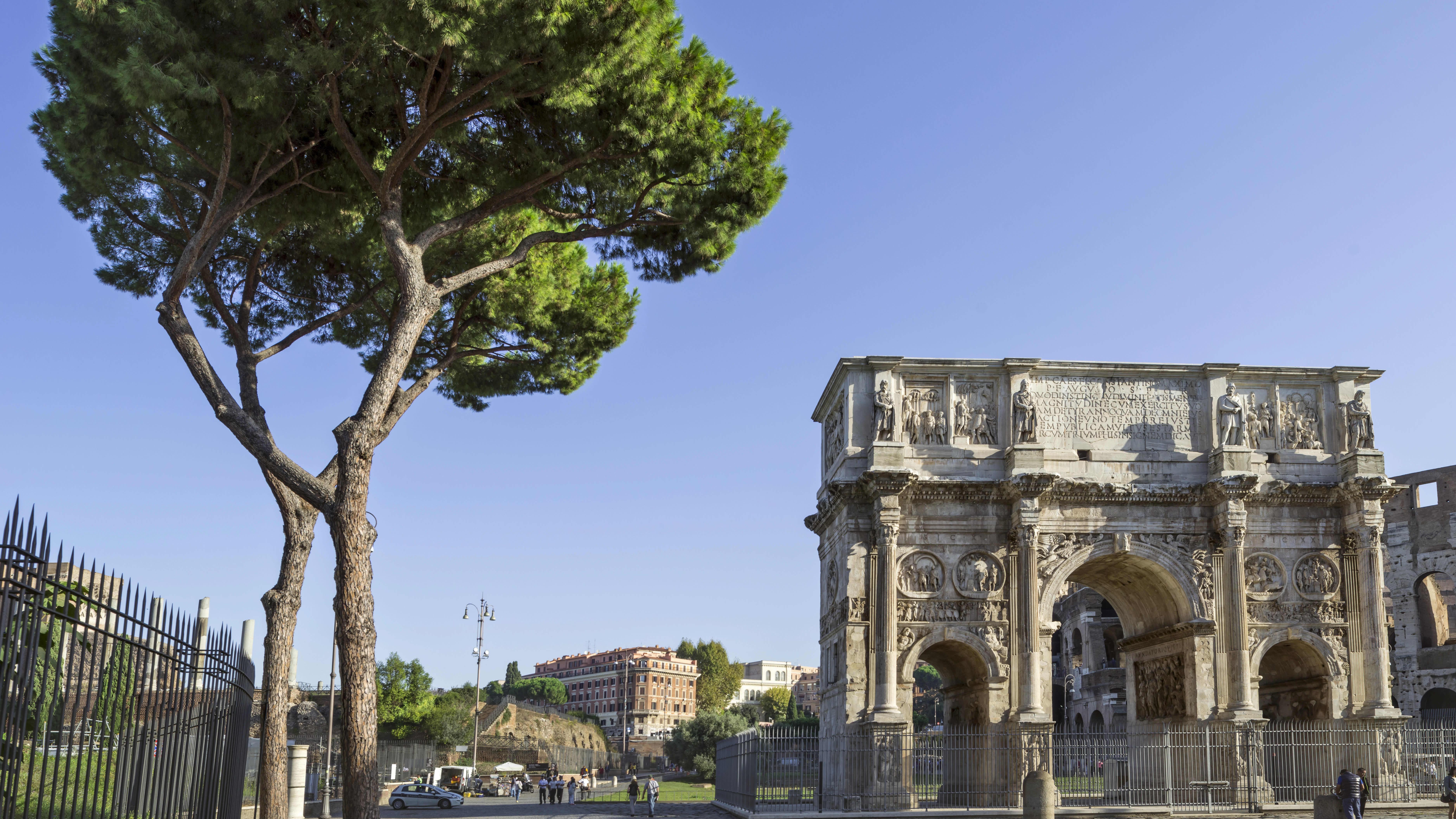 Pinjapuu Konstantinuksen riemukaaren luona Roomassa, Italiassa.