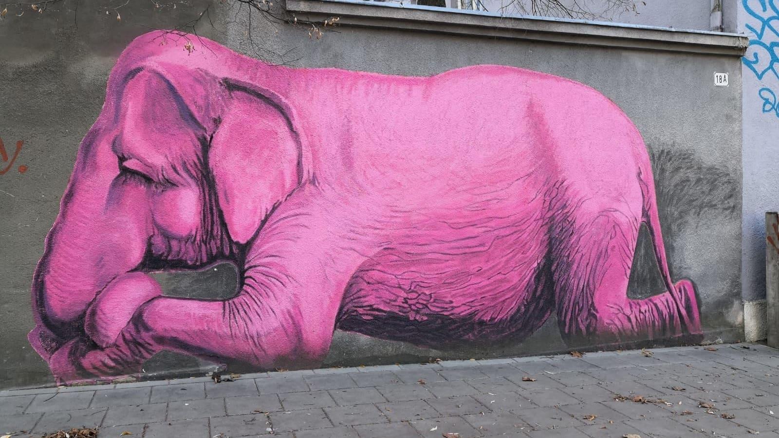 Katutaideteos, jossa on norsu, Kaunasissa