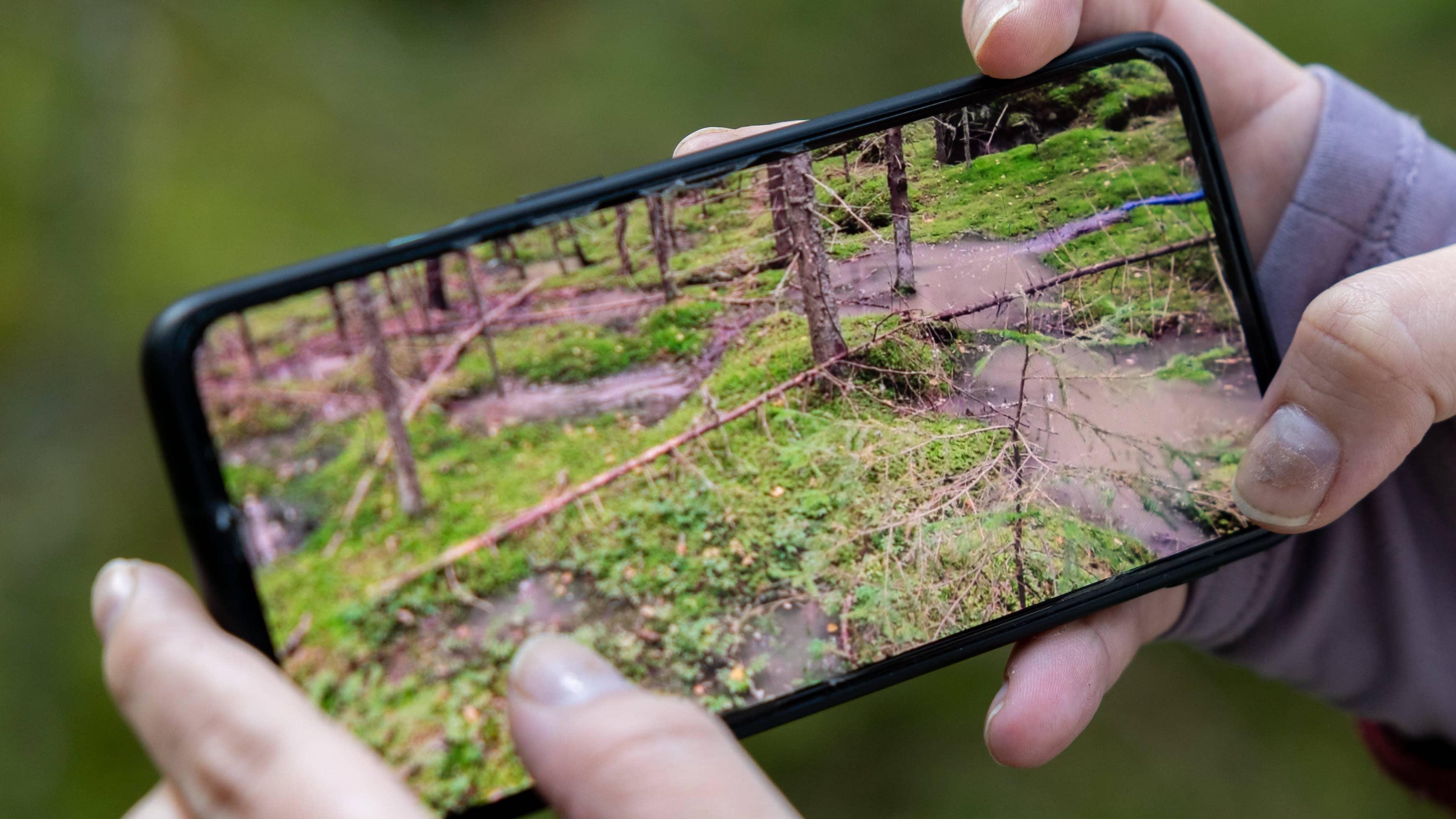 Riina Ahonen esittelee kuvia metsään vettä ryöpyttävästä hulevesien juoksutuksesta