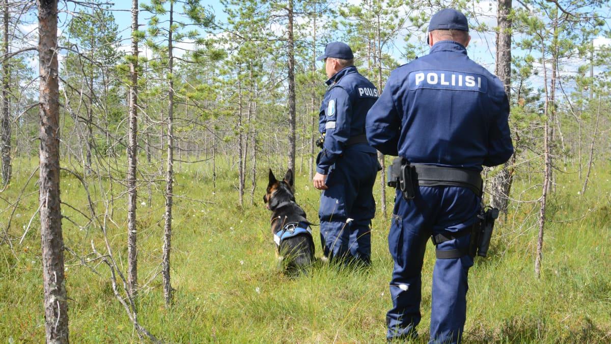 Hyvä hillasato työllistää myös poliisia – Eksyneen perään lähtee poliisikoira ja drooni