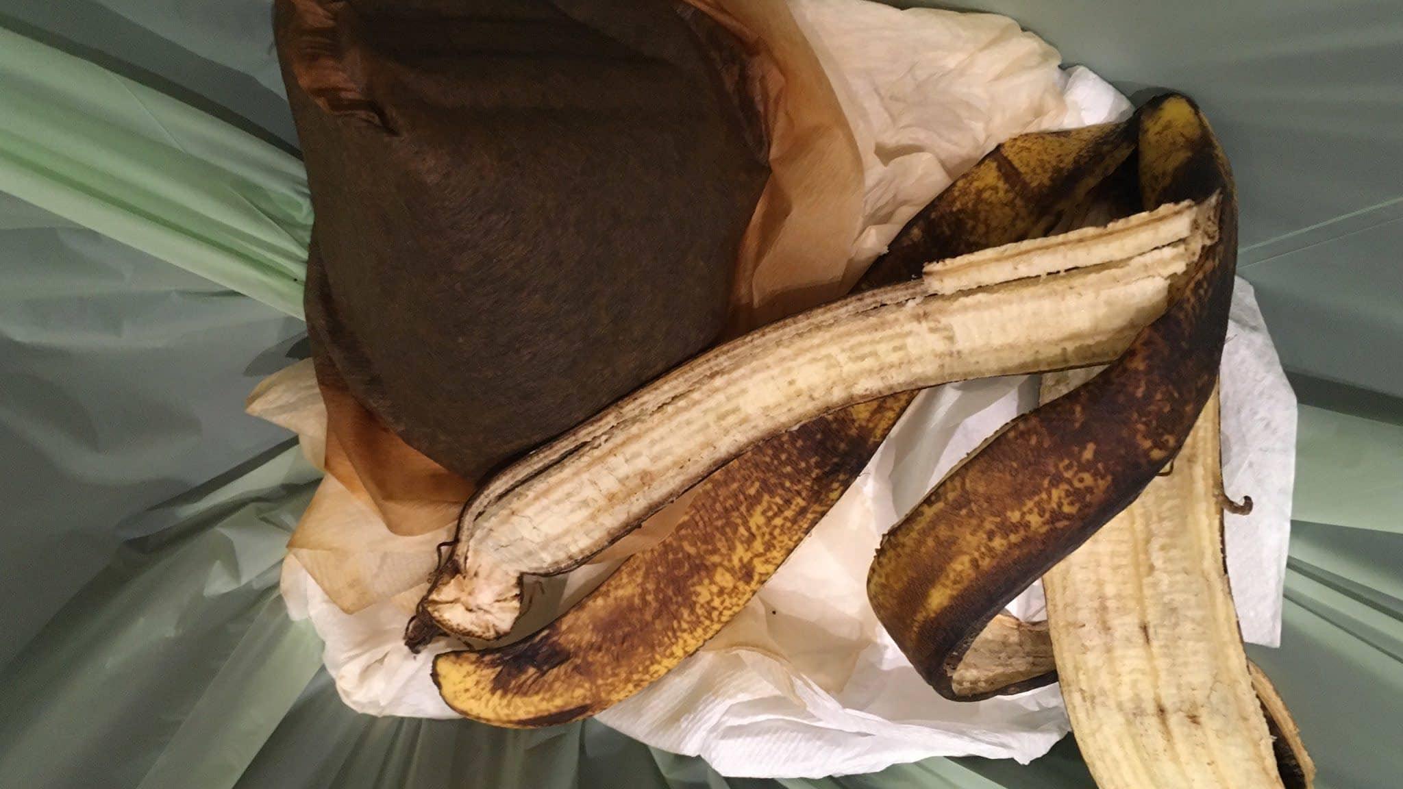 Tyypillistä biojätettä: kahvisuodatin ja banaaninkuori