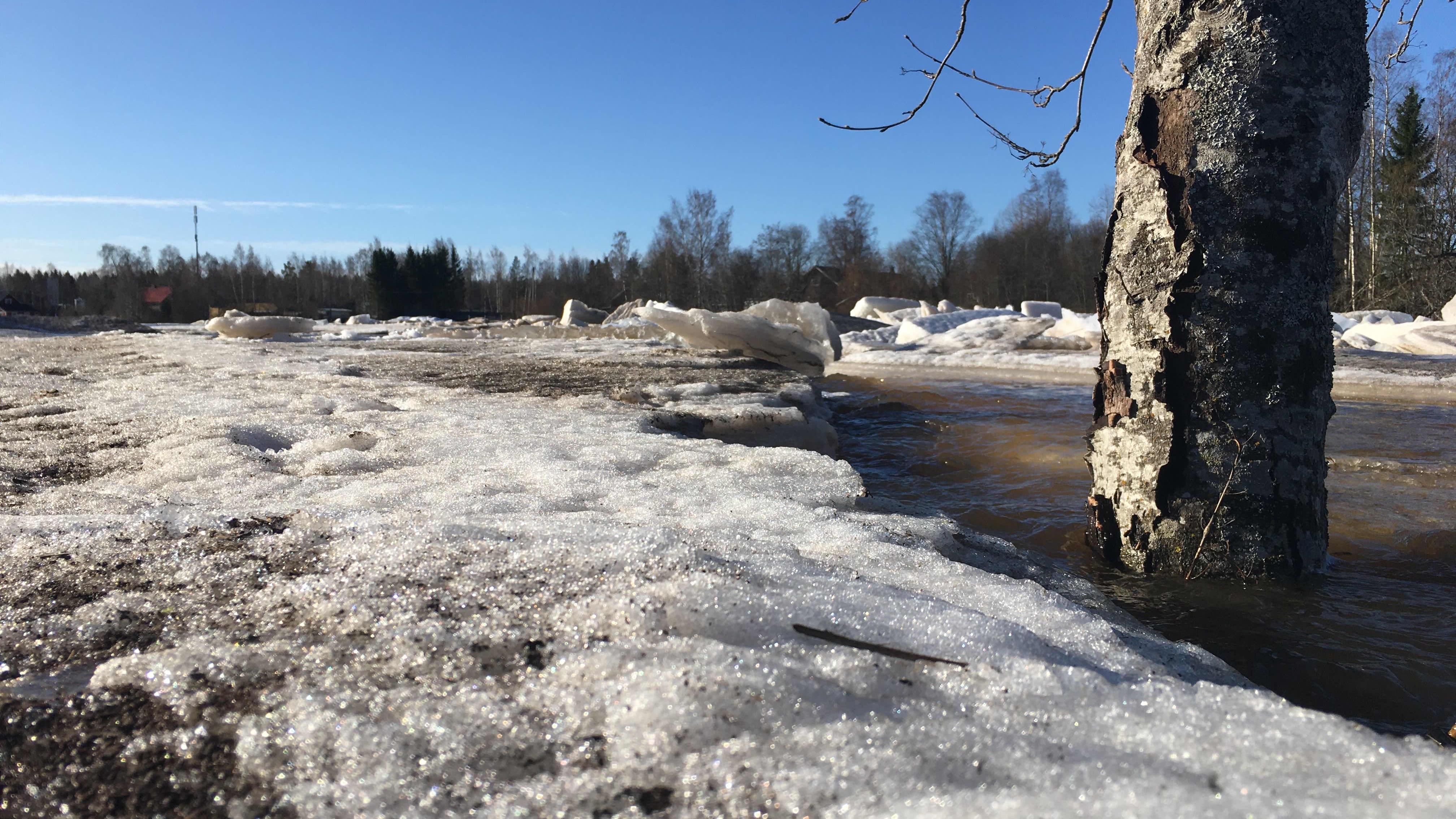 Kyrönjoki tulvii Isossakyrössä