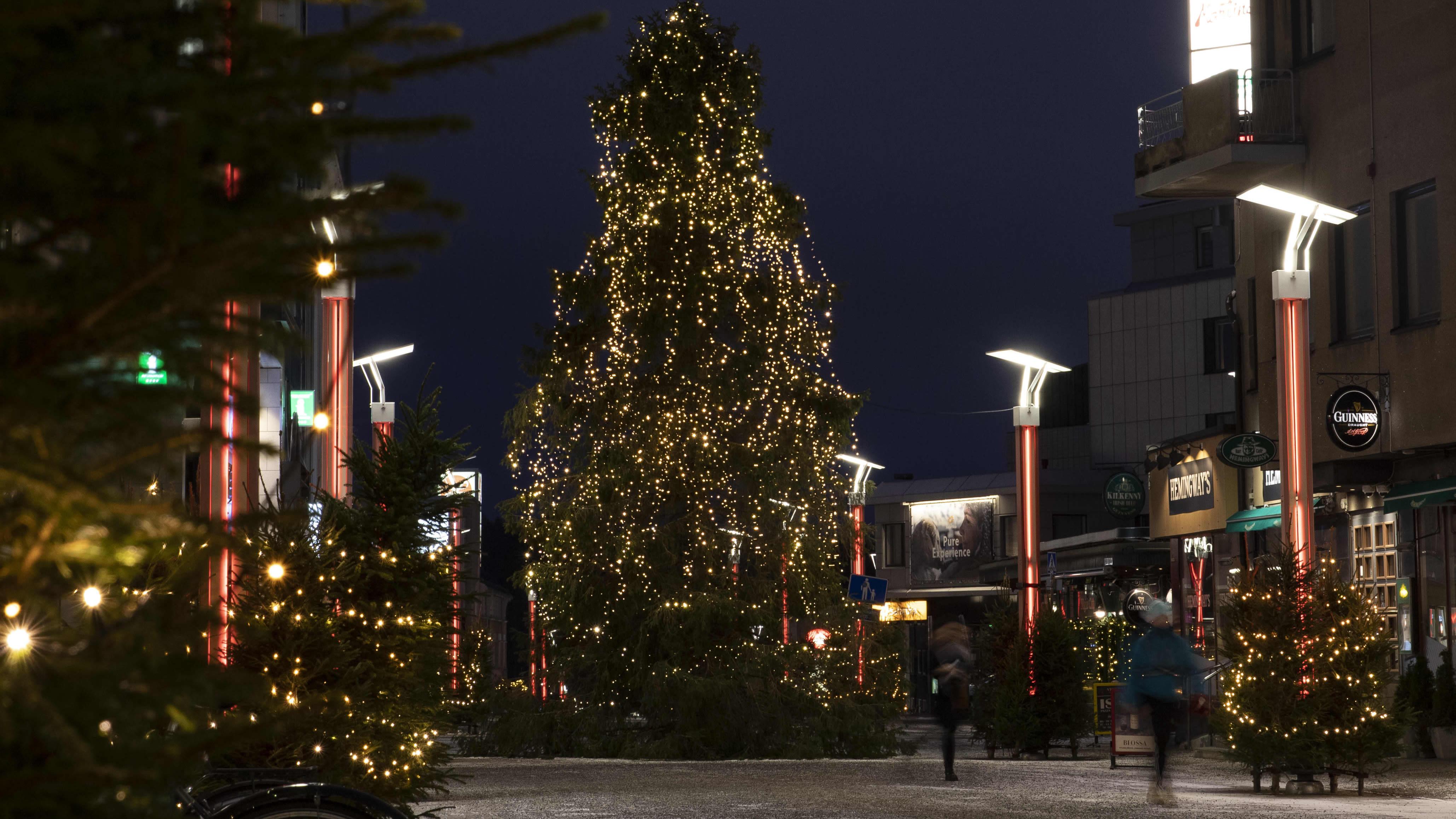 Yli 200 kuusta valaisee kävelykatua – rovaniemeläiset yrittäjät luovat joulutunnelmaa