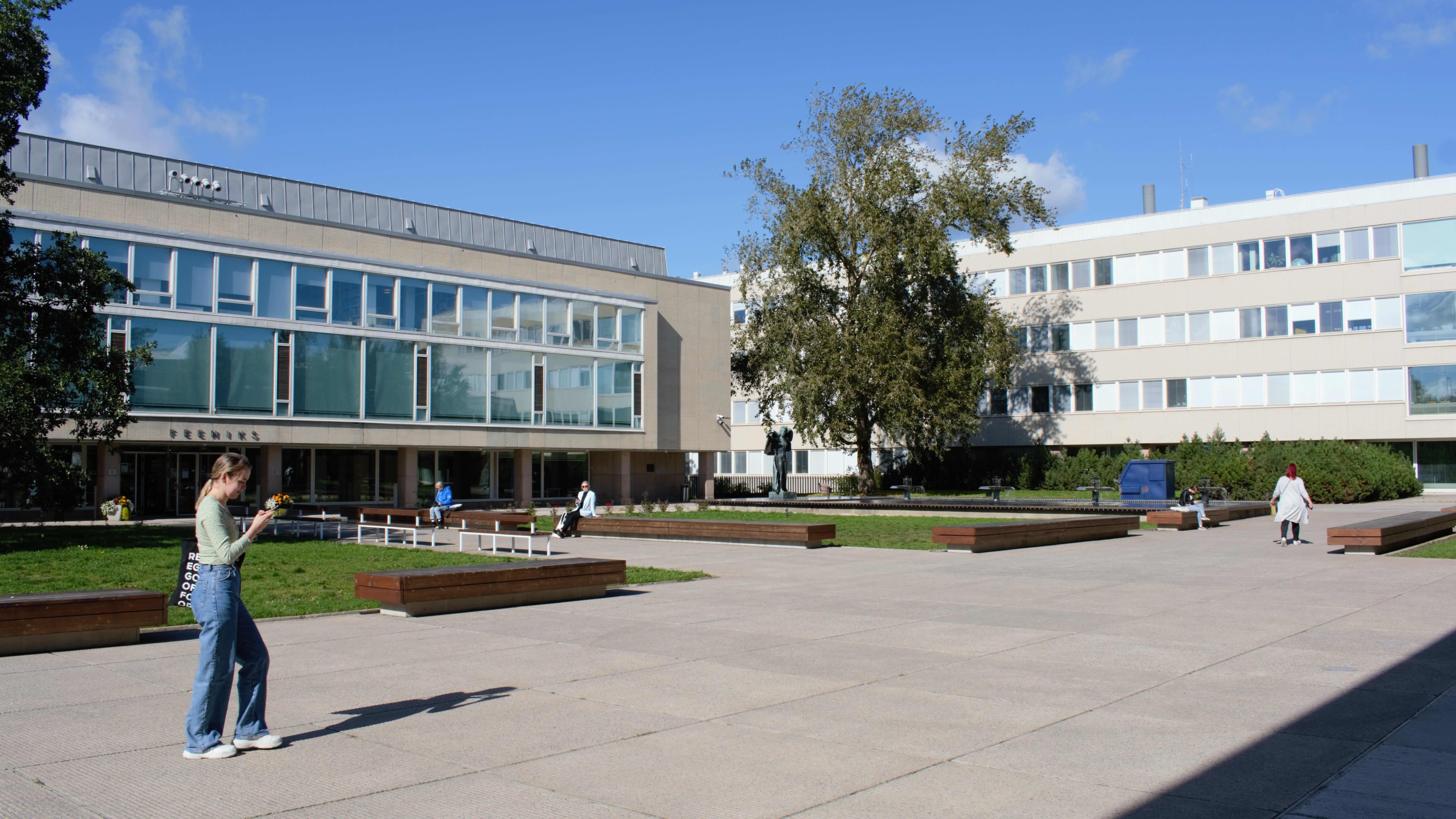 Turun yliopiston pihaa pääkirjaston edessä.