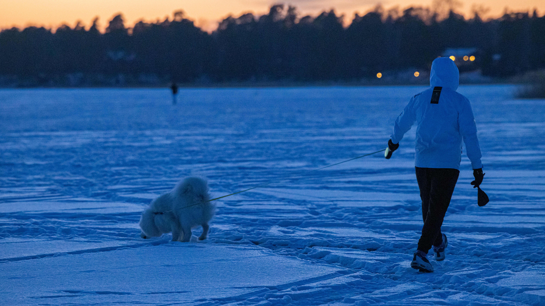 Henkilö ulkoiluttaa koiraa meren jäällä.