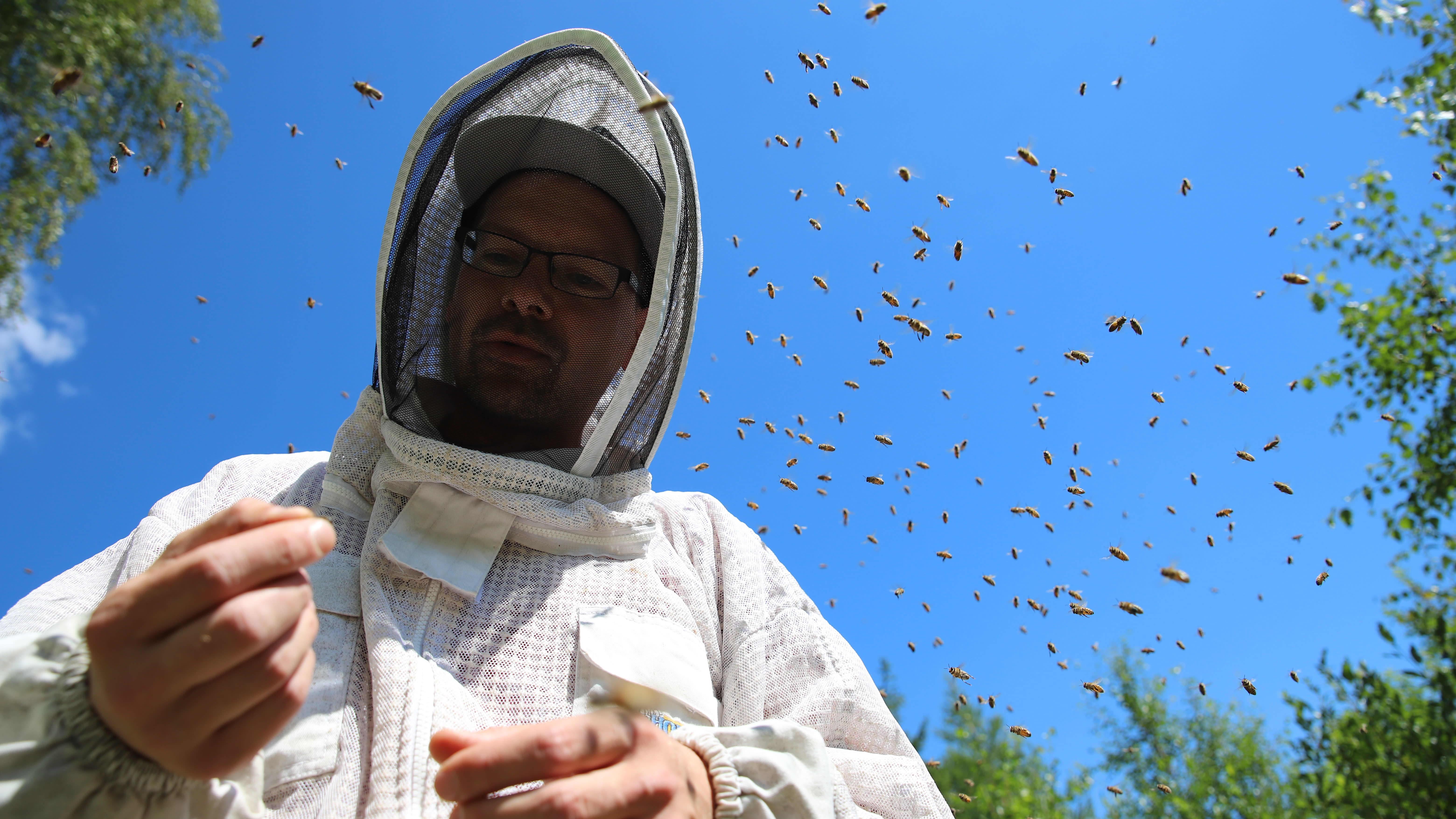 mies suoja-asussa mehiläistarhalla