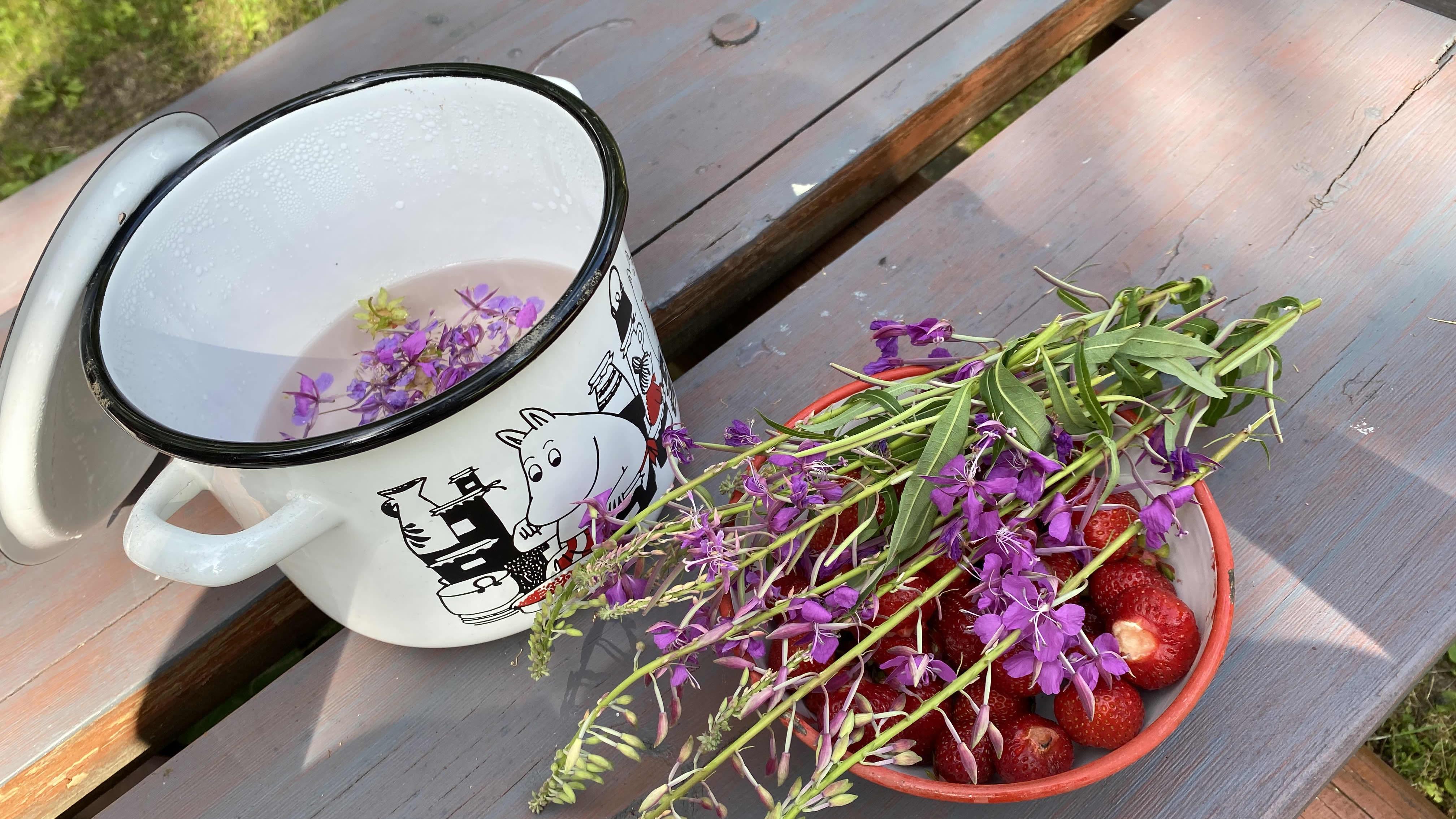 Näin valmistuu raikas kesäjuoma mansikasta ja maitohorsman kukista
