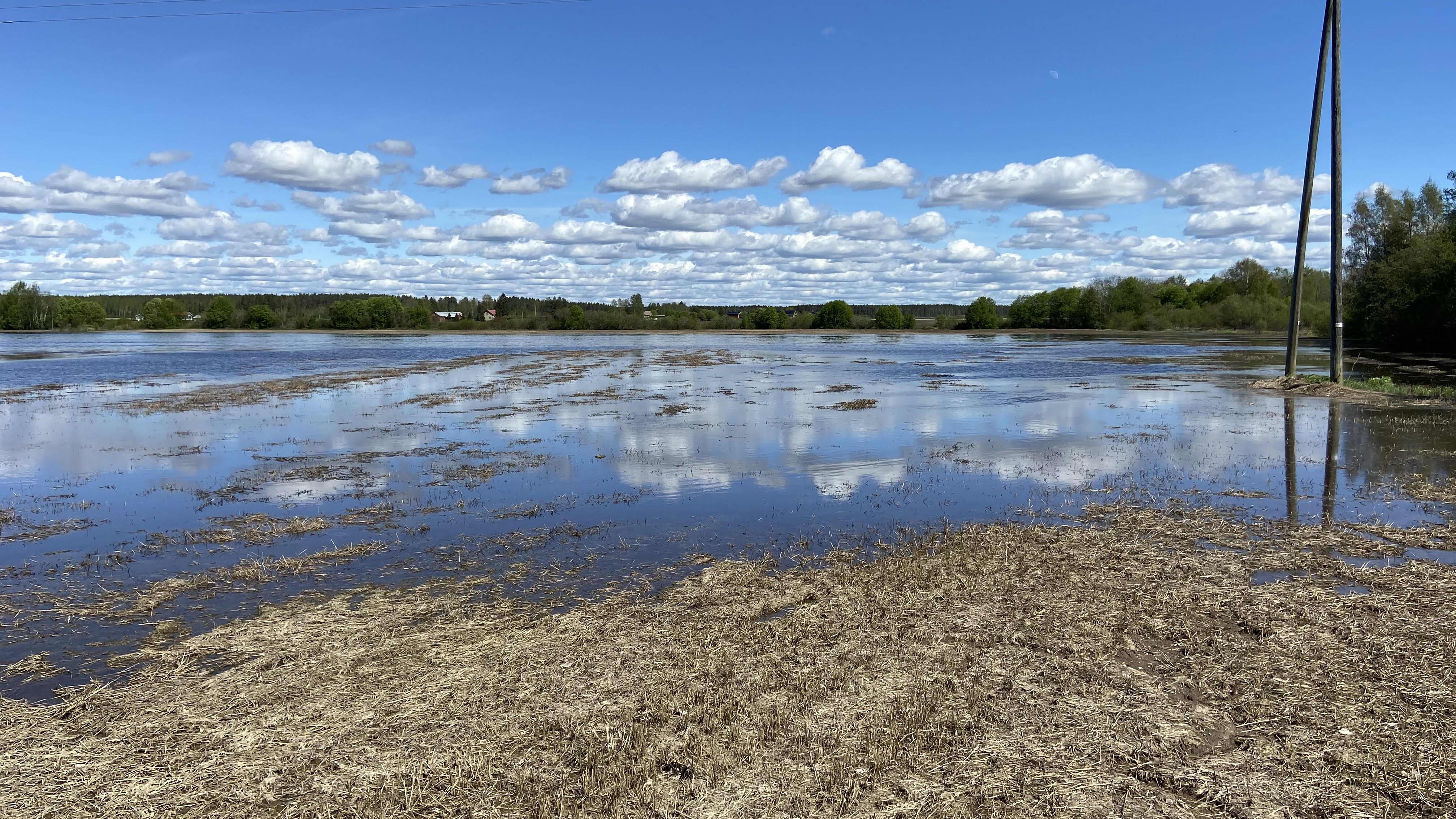 Vesi tulvii toukokuussa Kauhavan Liinamaassa.