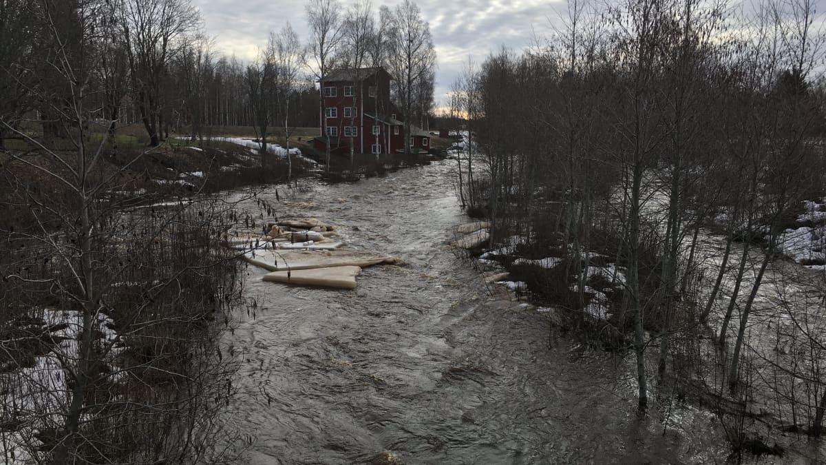 maalahdenjoki tulvii