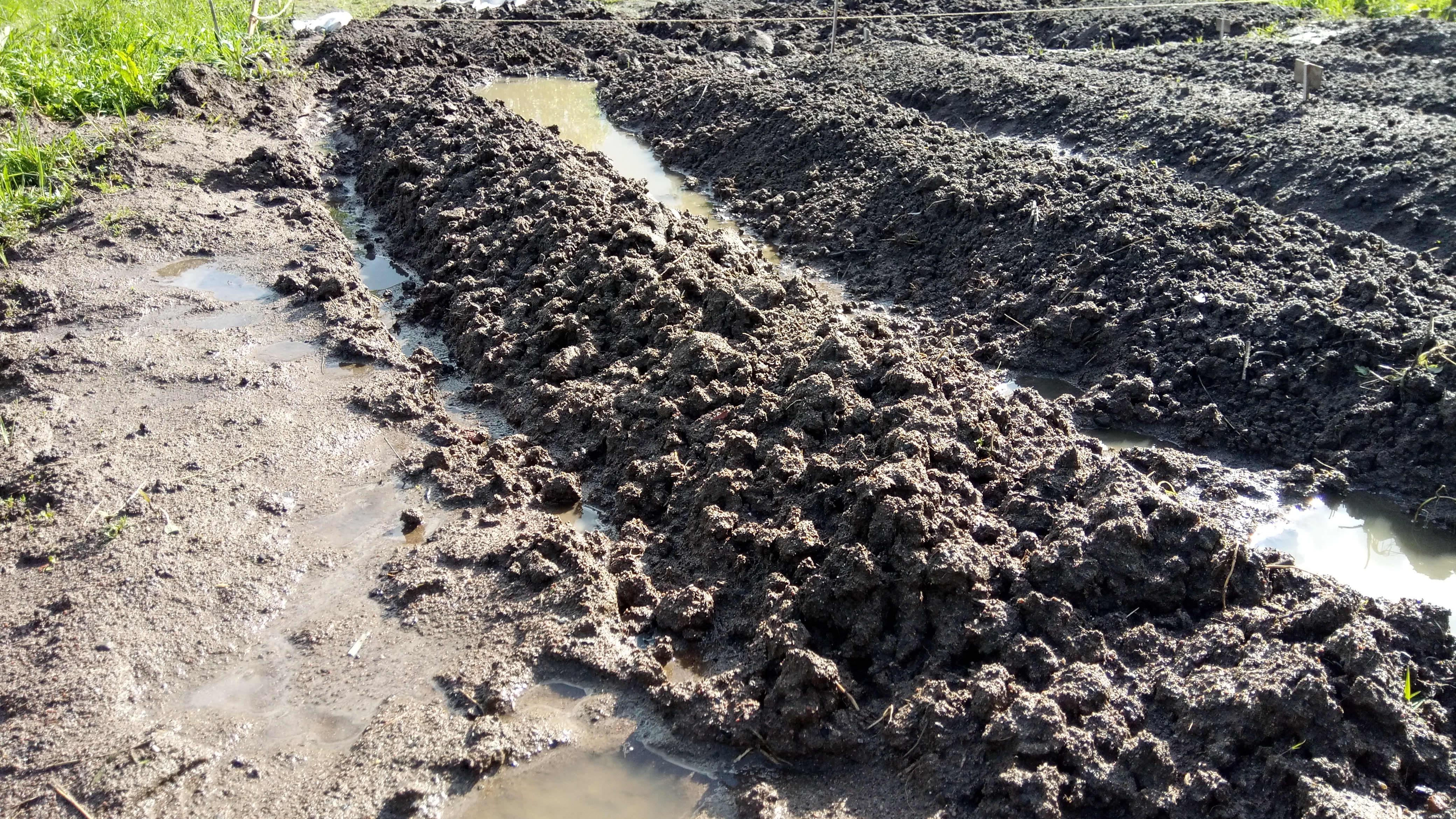 Veden runtelamalle pellolle on kaivettu hätäojia.