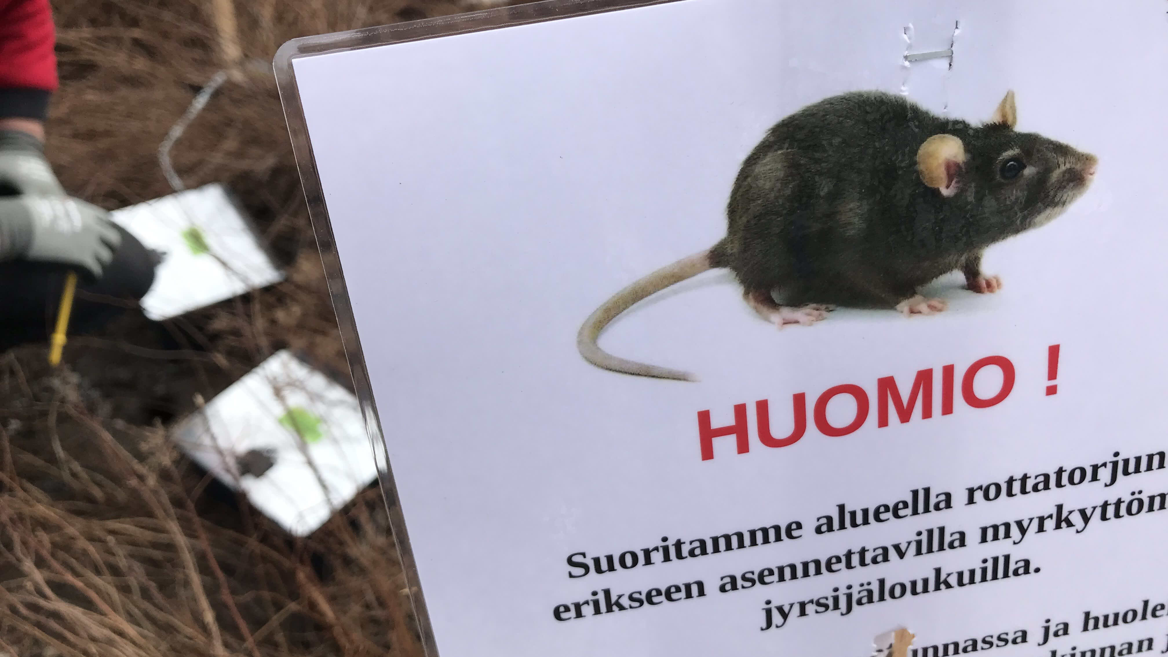 Varoituskyltti, jossa kerrotaan rottatorjunnasta