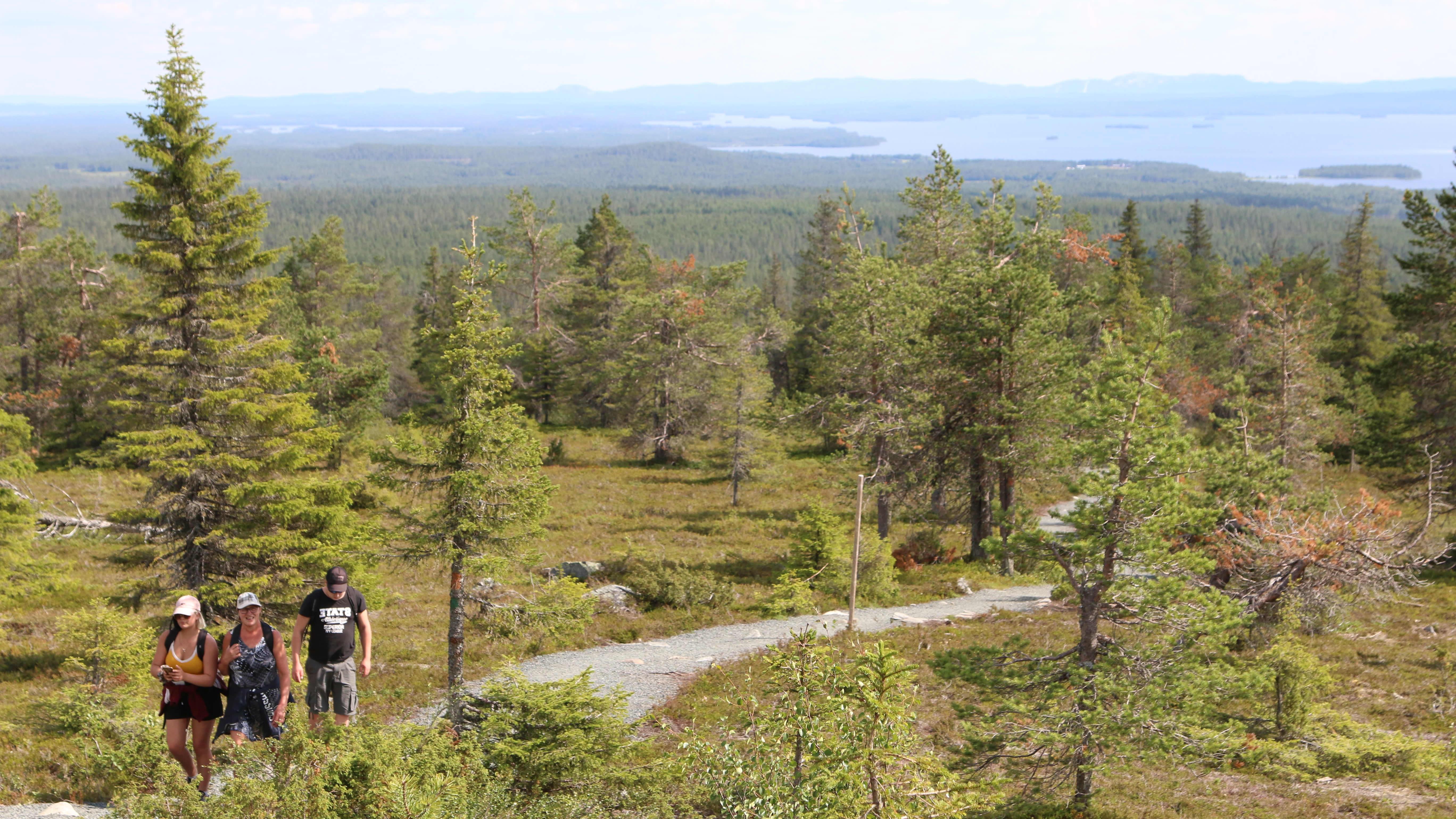 Vaeltajia Riisitunturin kansallispuistossa.