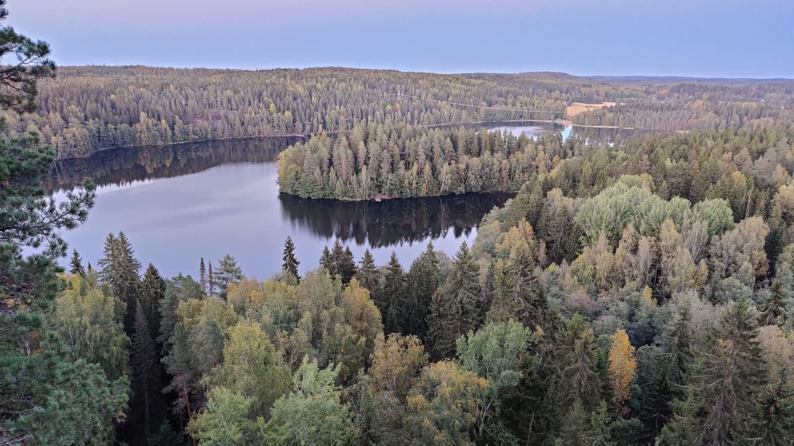 Syksyistä metsää järven ympärillä.