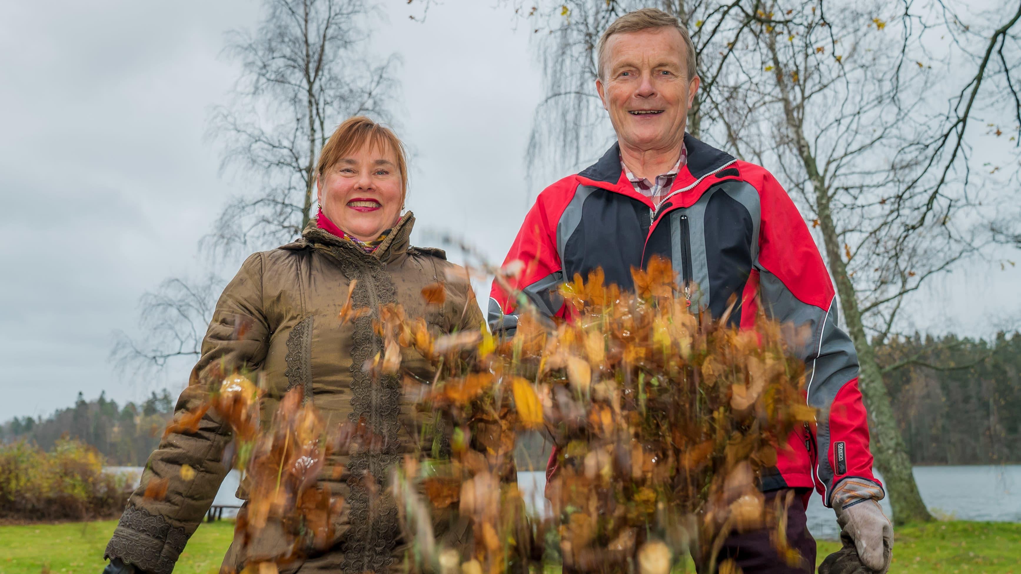 Espoolaispariskunta, Eeva- Liisa Tanskala ja Juhani Rahkonen heittämässä syksyn lehtiä.
