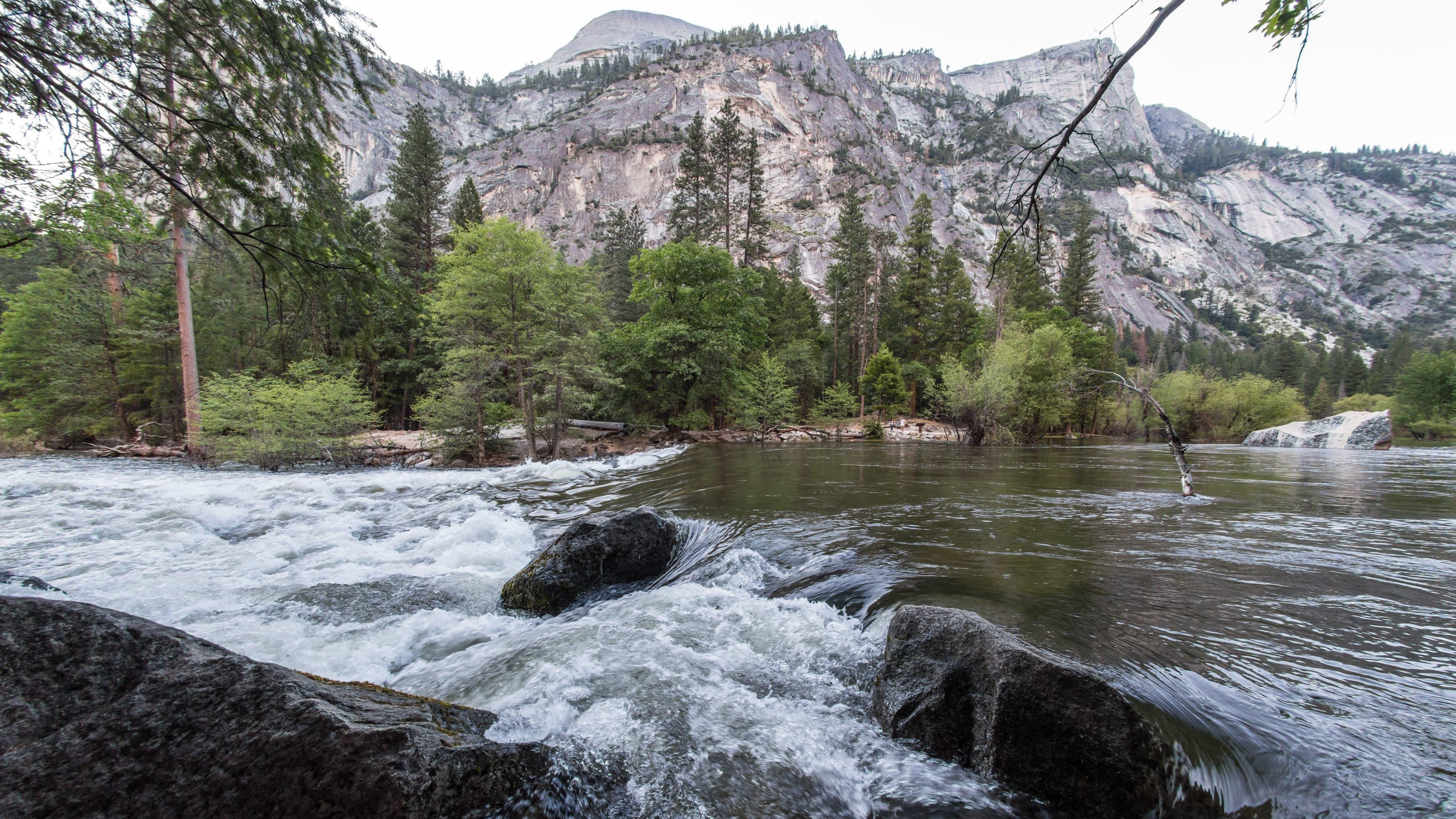 Merced-joki virtaa Yosemiten kansallispuiston halki. Maisemakuvassa vuoristoa ja metsää.