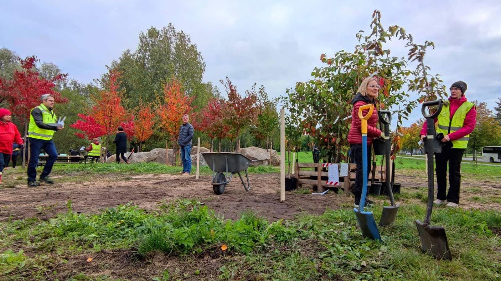 ihmisiä seisoskelemassa kirsikkapuistossa odottamassa talkoiden alkamista