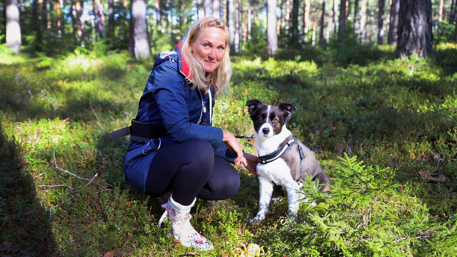 Koiranomi Paula Speer on kouluttanut bordercolliensa Winin etsimään sieniä.