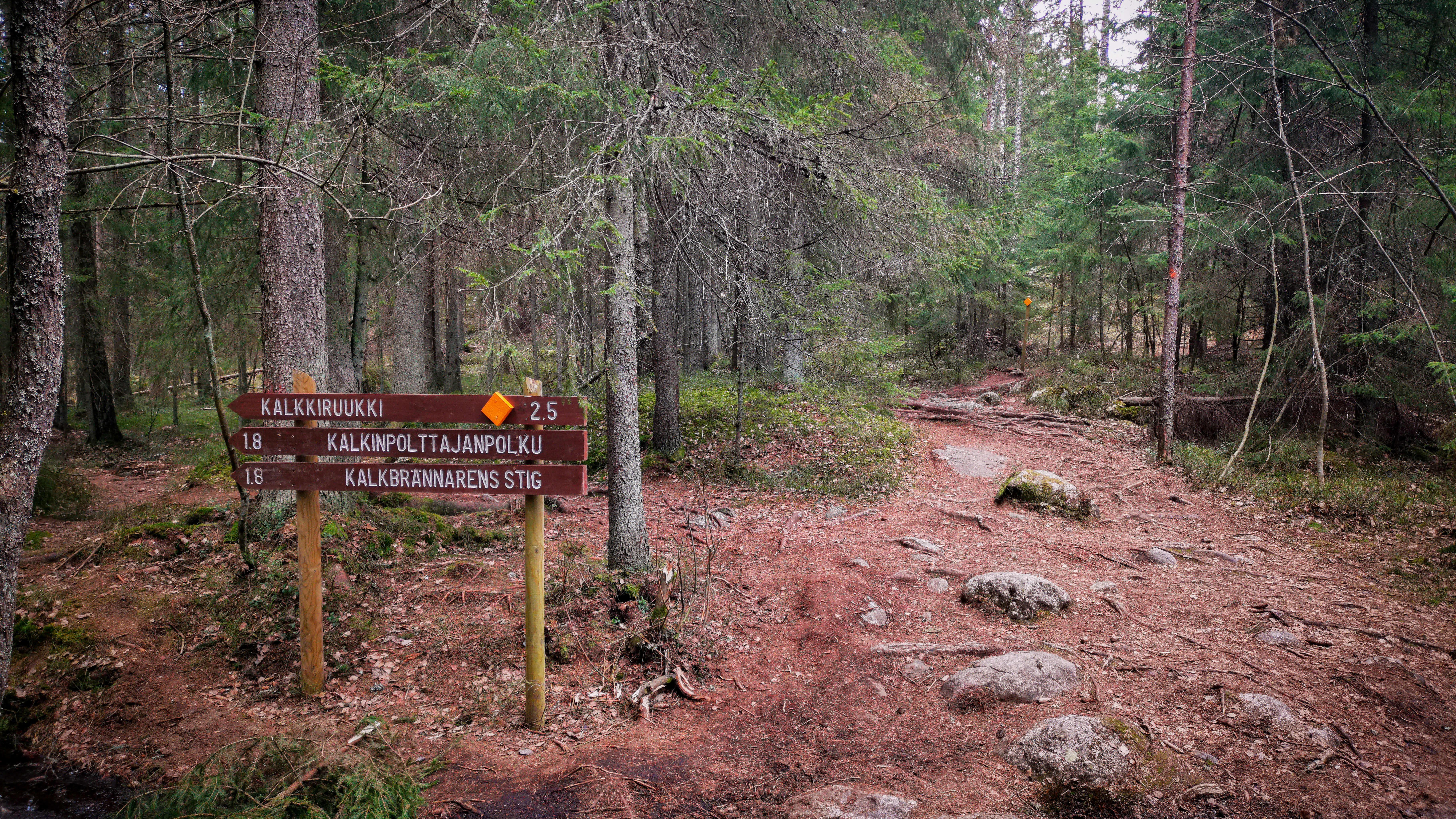 Luontoreitti Sipoonkorven kansallispuistossa.