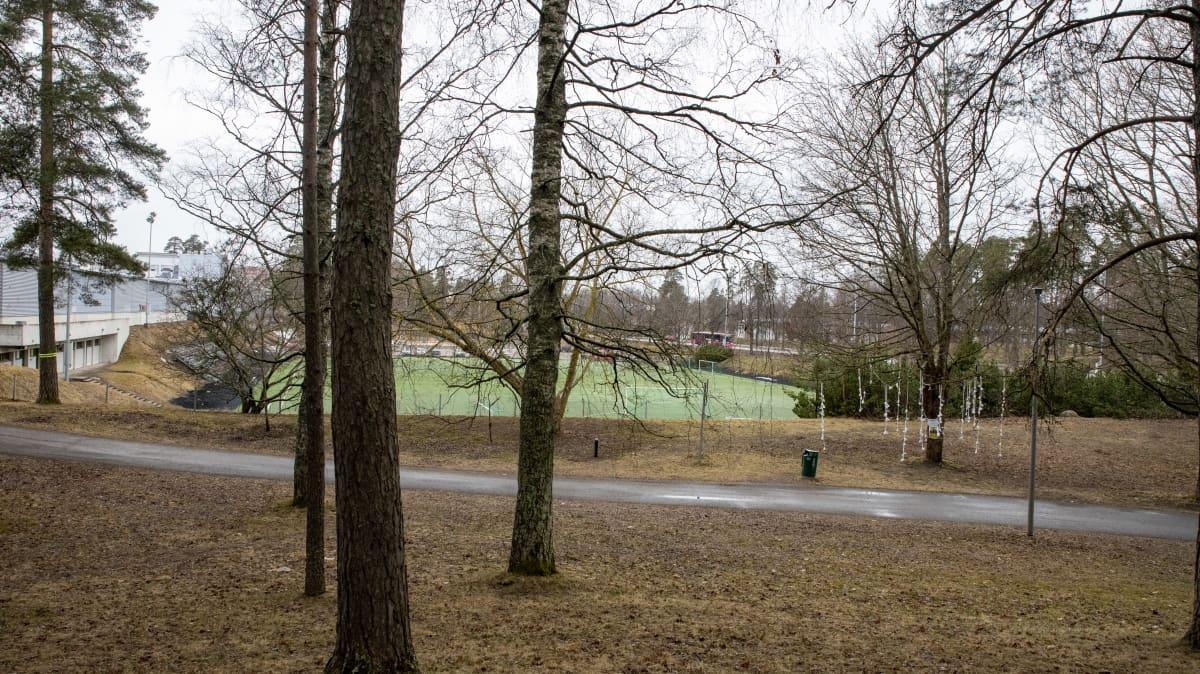 Amiksen tekonurmi ja sen viereistä arboretumia Lappeenrannassa.