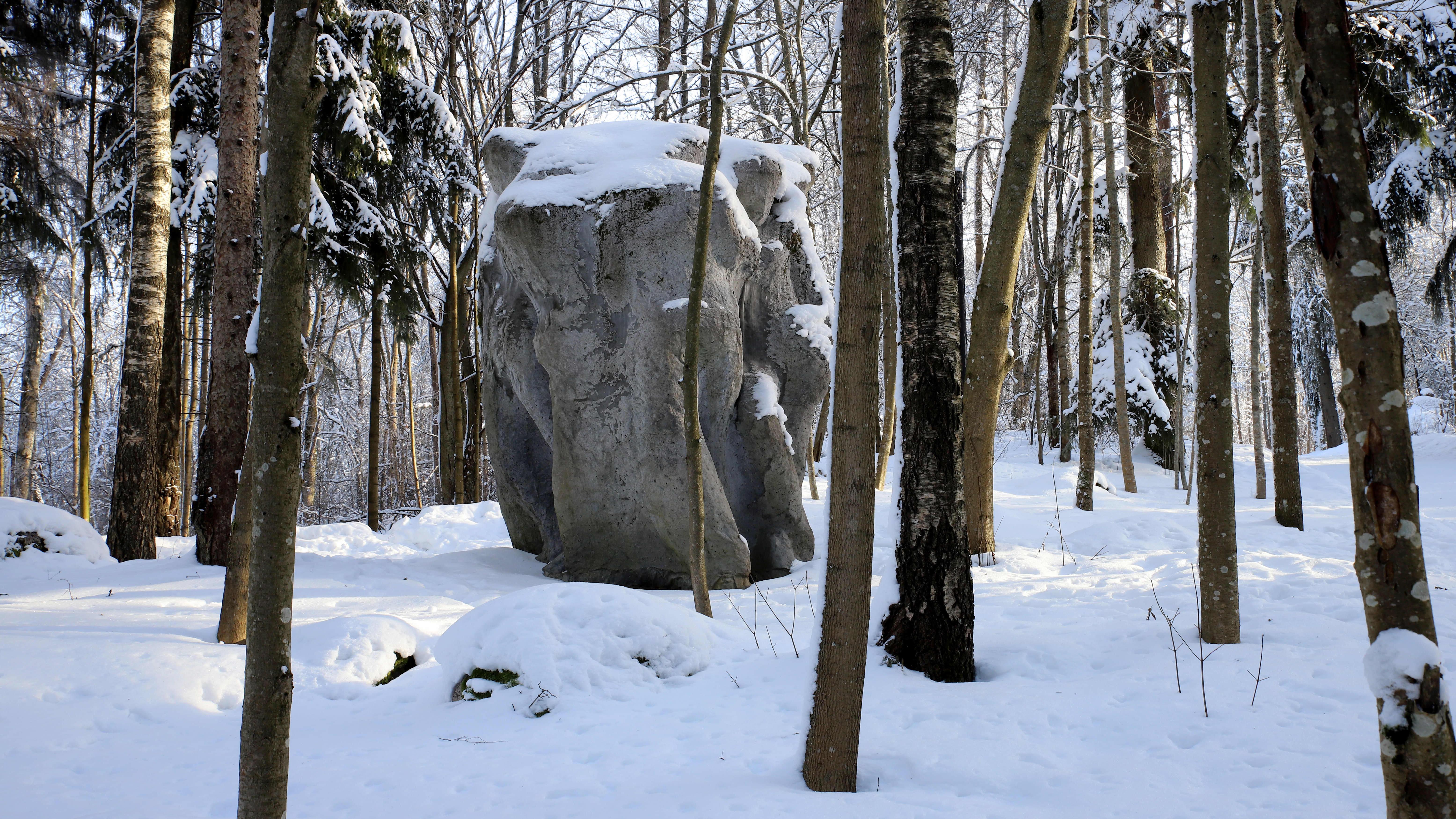Iso Kivi teos Lanupuiston metsässä, talvi.