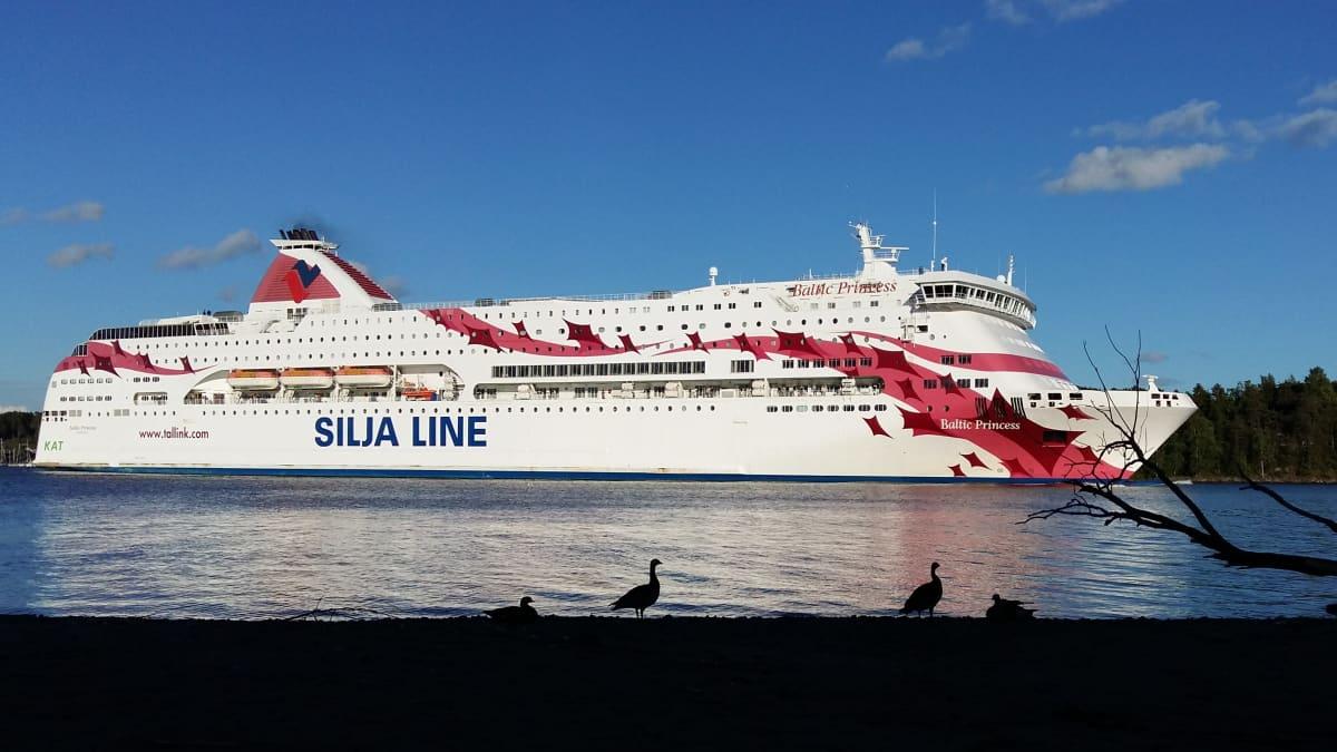 M/S Baltic Princess kulkee Ruissalon ohi matkalla Turusta Tukholmaan.