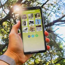Kännykkä kädessä, kännykässä näkyy kuva lintubingosta.