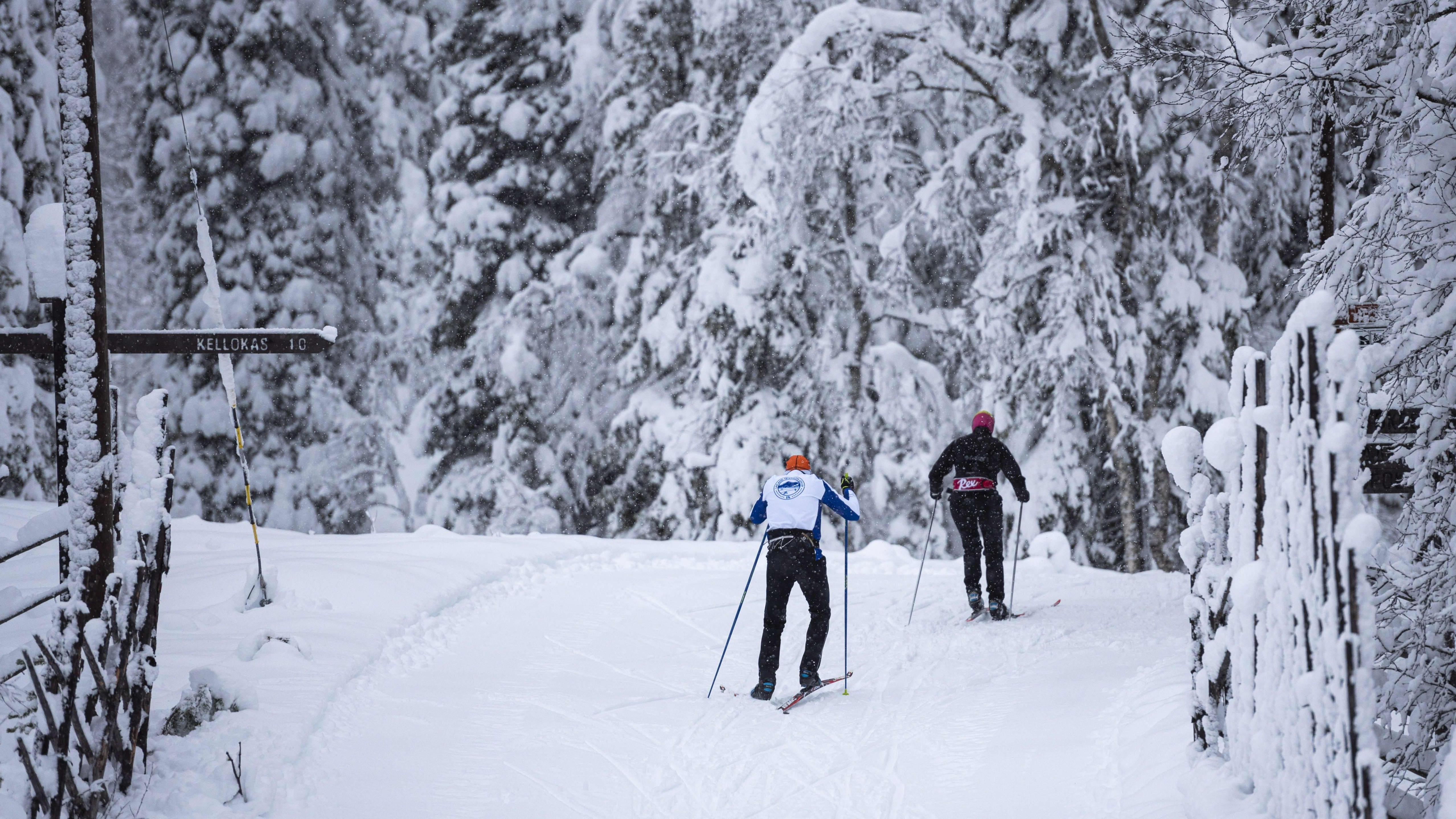 Kaksi hiihtäjää lumisessa maisemassa.