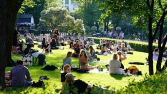 Järjestyshäiriöt puistoissa Esplanadi