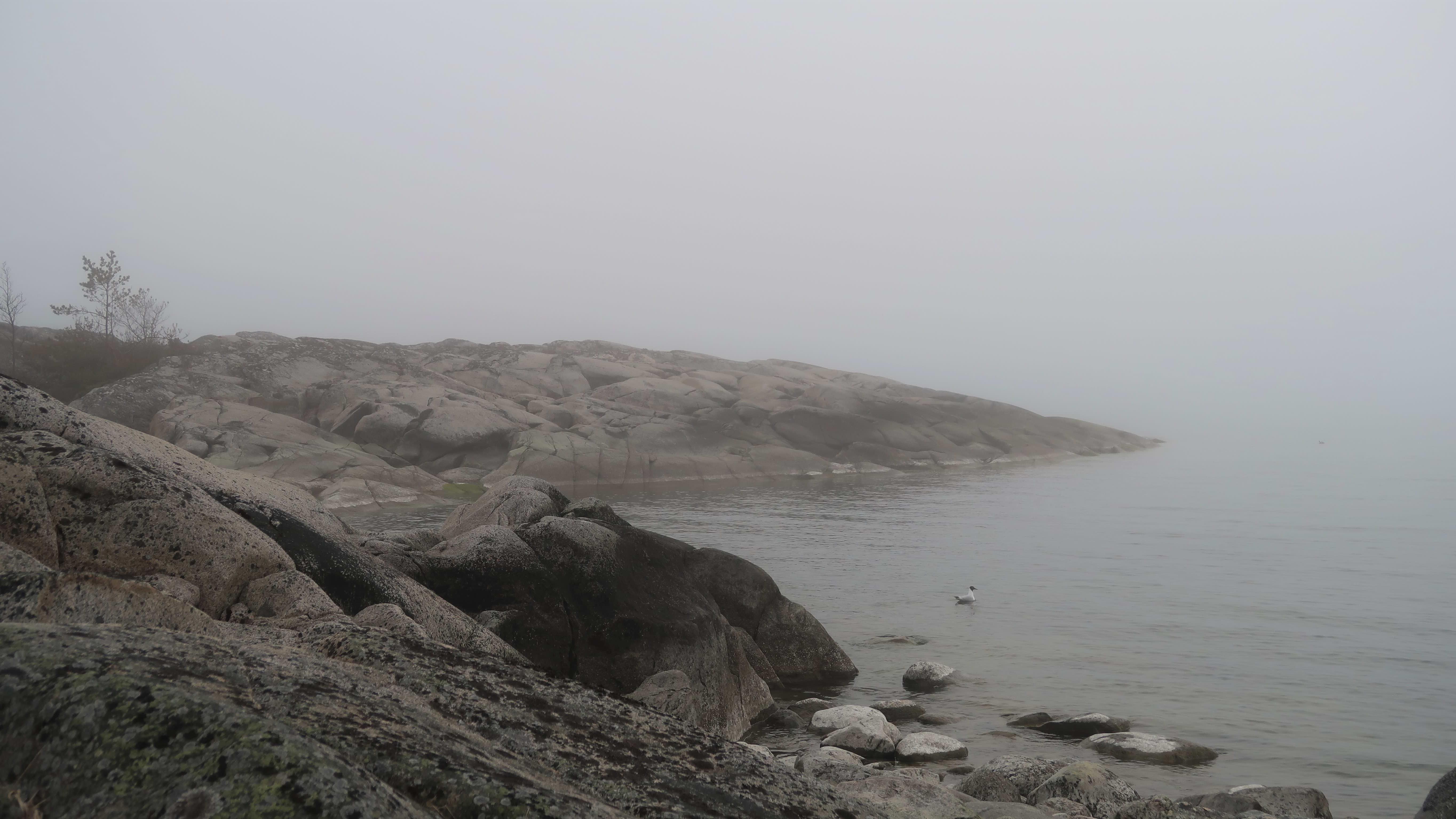 Dimma i Nystads skärgård, södra Bottenhavet, maj 2020.