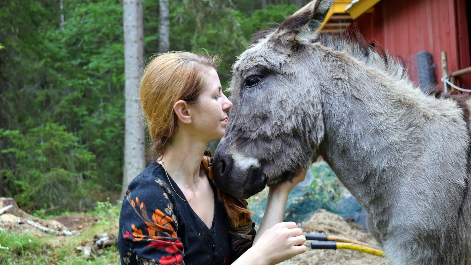 Maria Pesonen ja Aasi