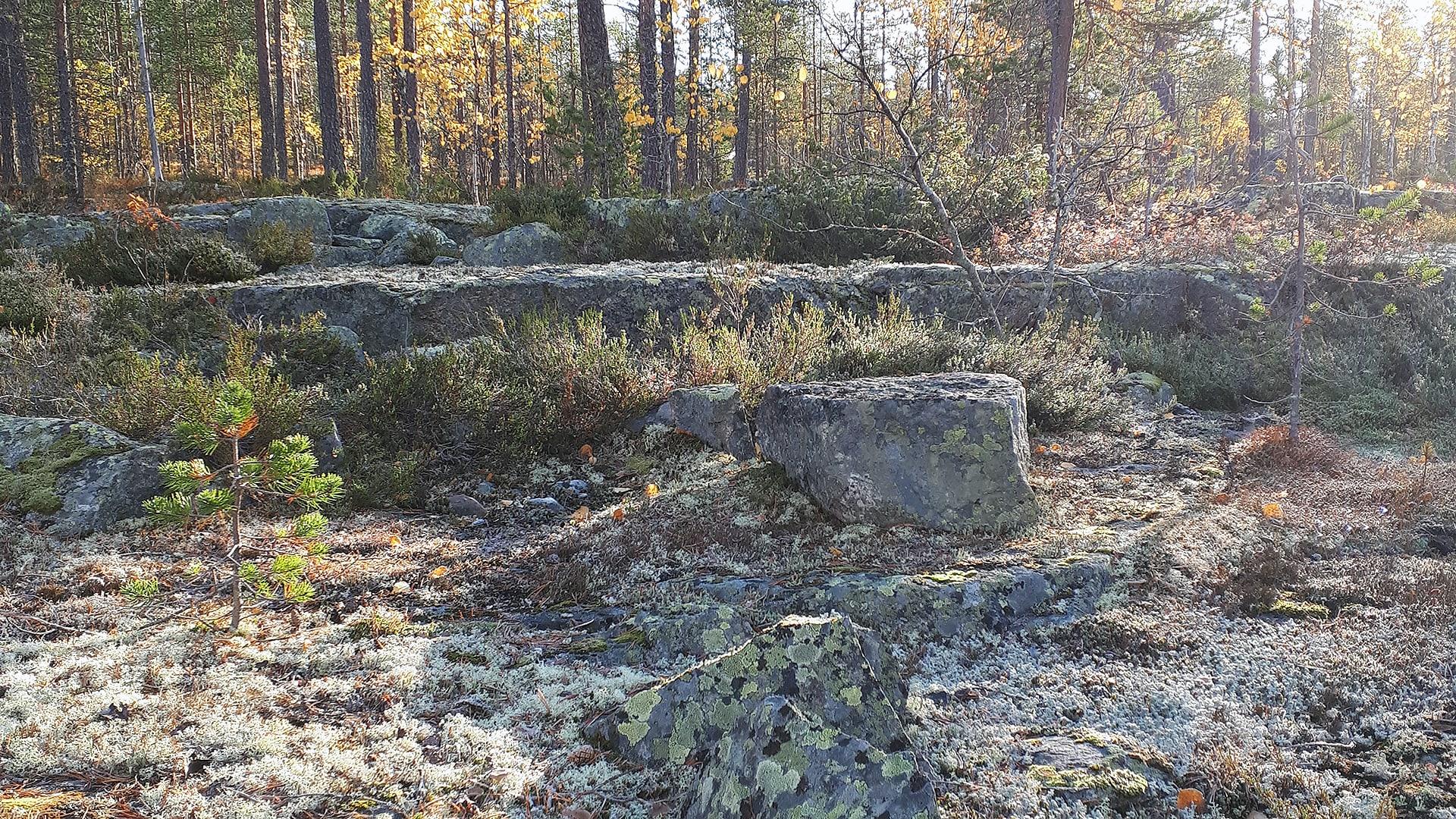 Kalliometsän terassirakenne