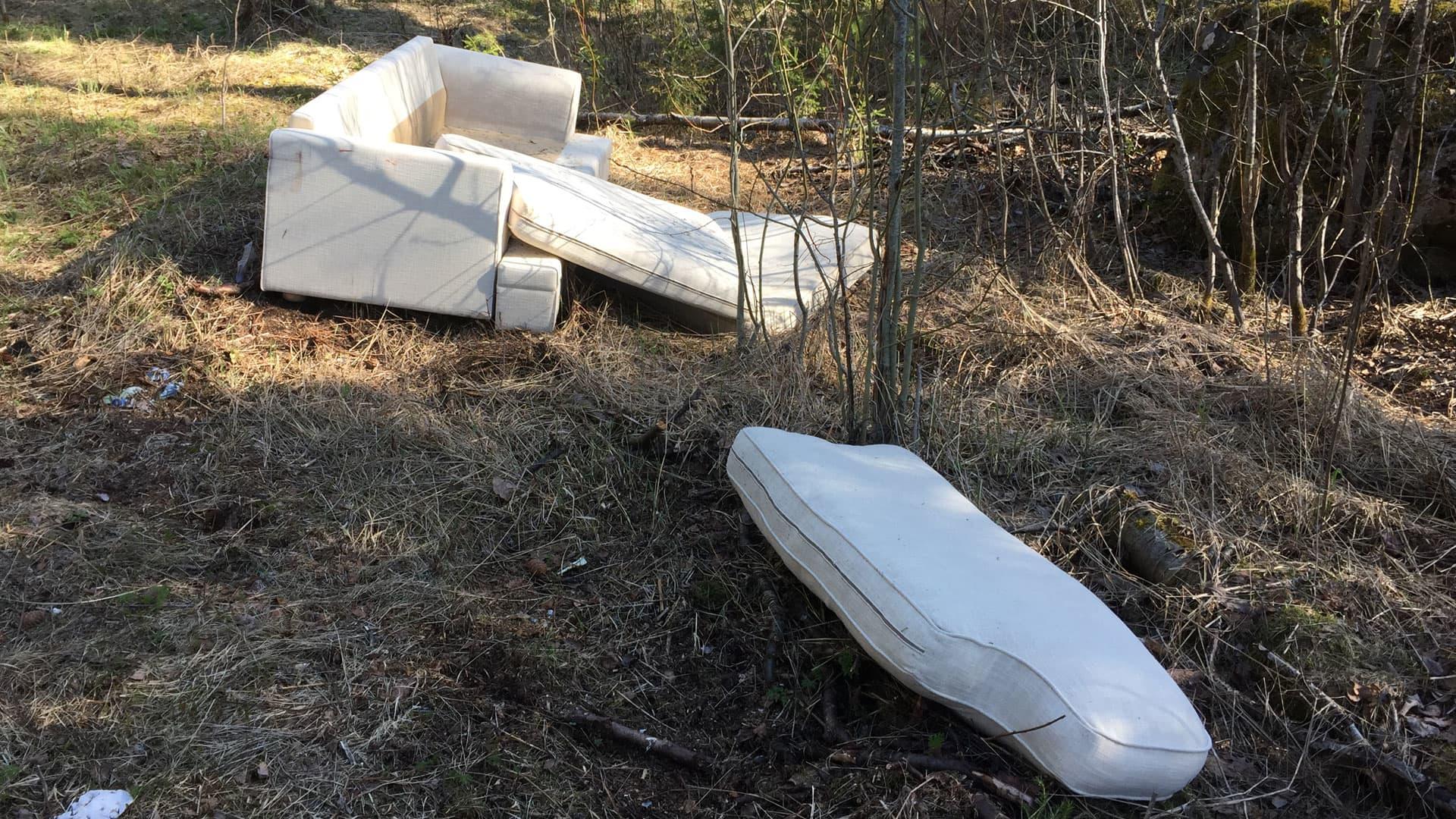 Luontoon jätetty sohva