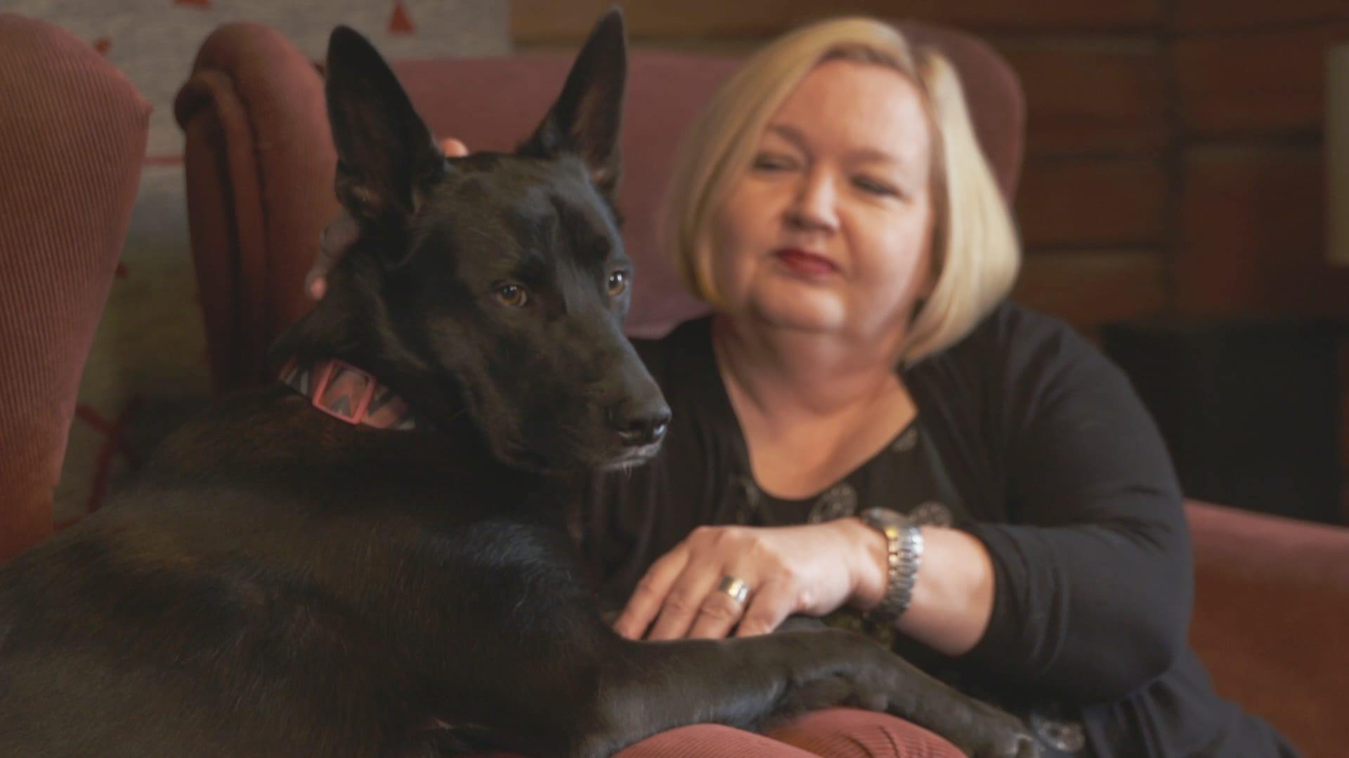 Musta koira etualalla, taustalla nainen.