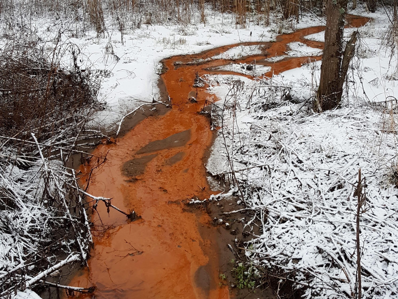 Rautapitoiseen veteen kertyvät rautabakteerit voivat värjätä ojan oranssiksi.