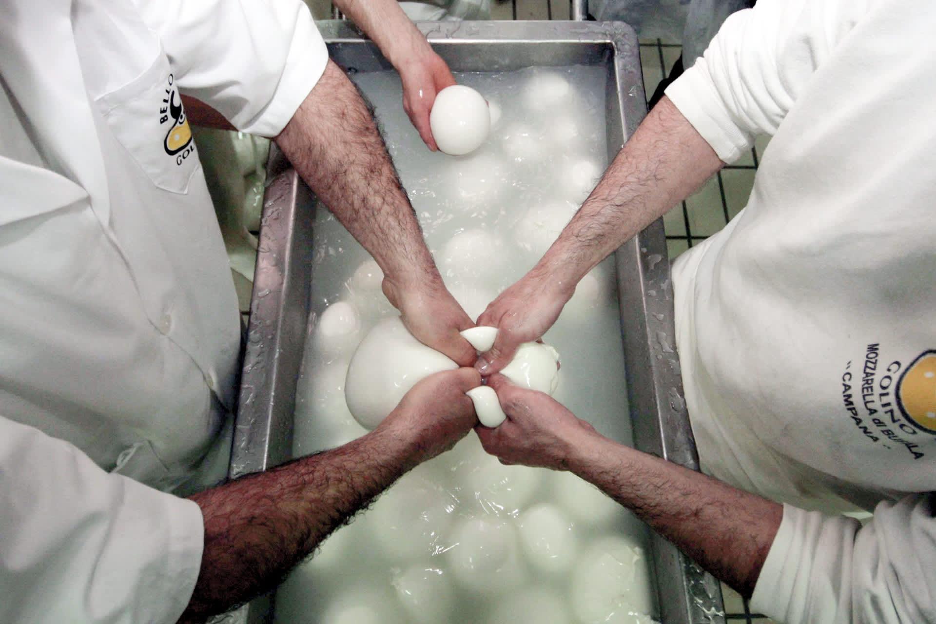 Työntekijät valmistavat mozzarellaa.
