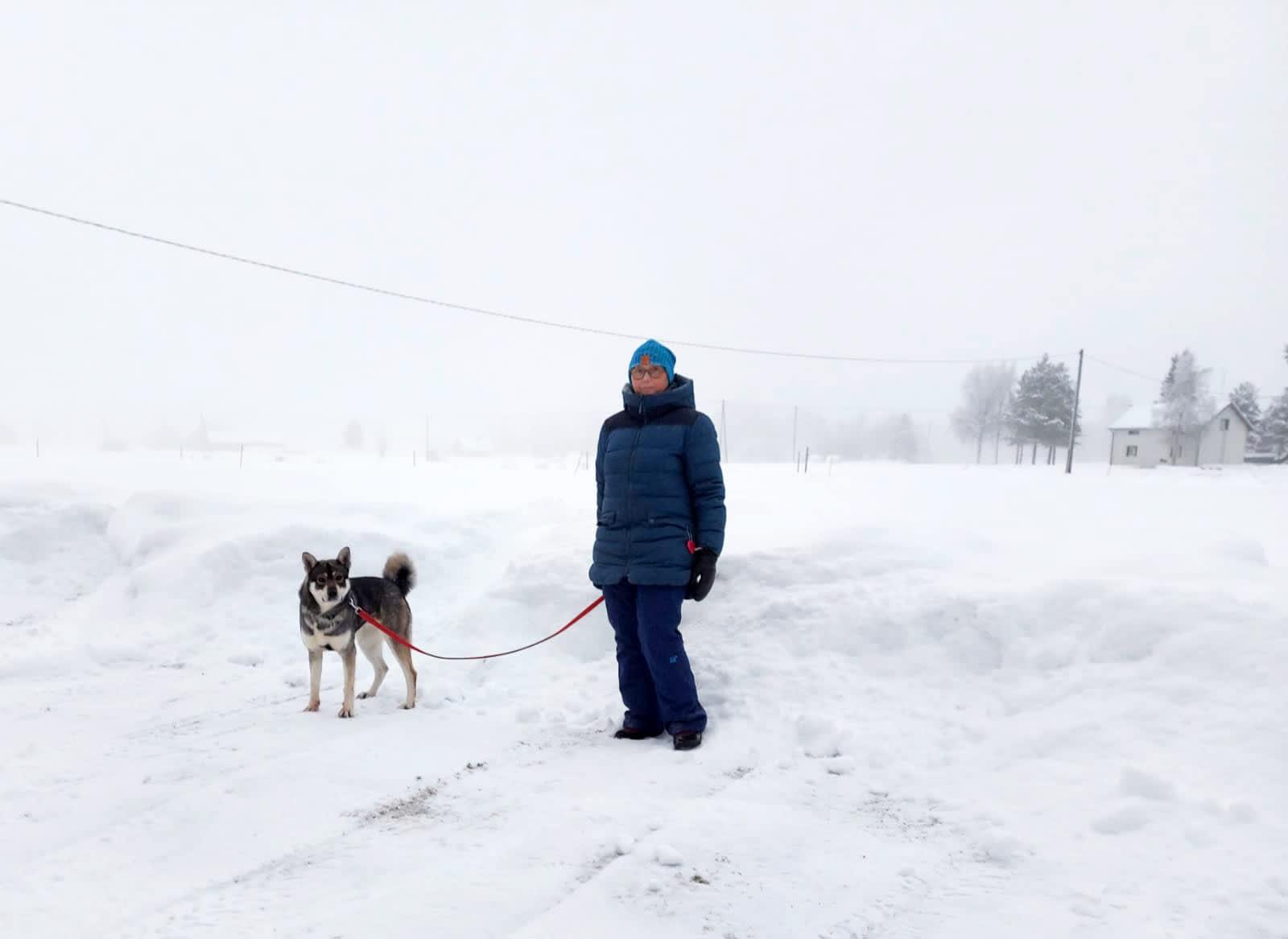 Tiina Hauensuu ja Aikku-koira