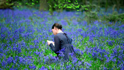 Siniseen mekkoon pukeutunut nuori nainen istuu vihreänvioletilla kukkakedolla ja lukee kirjettä.