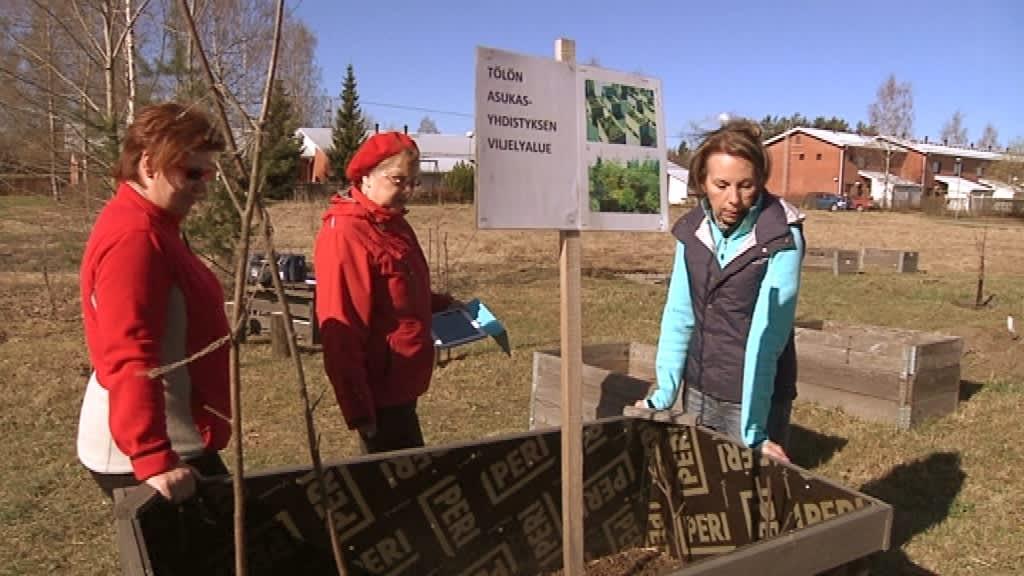 Kolme naista seisoo viljelylaatikon ympärillä.
