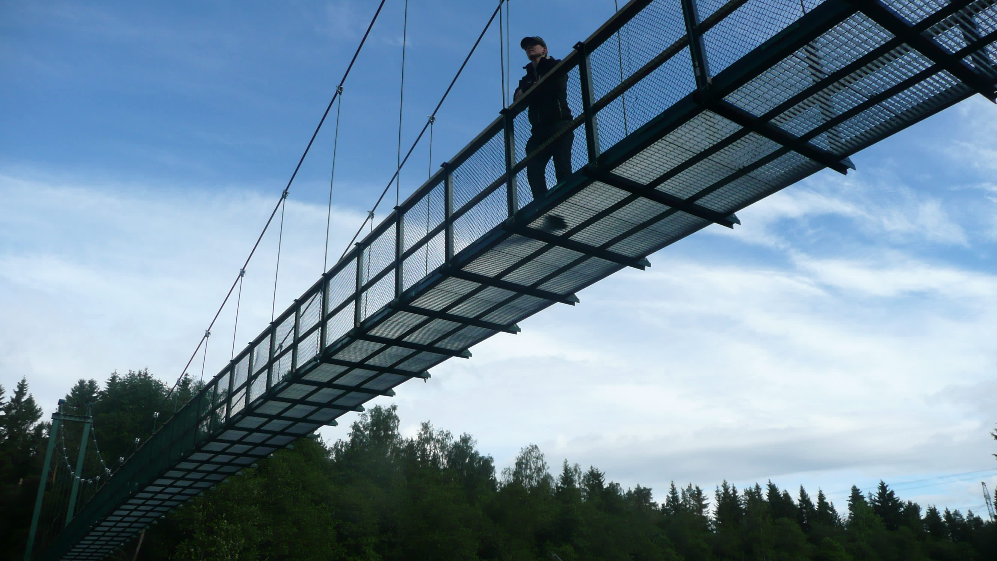 Silta on tehty teräksestä ja mittaa sillä on 55 metriä.