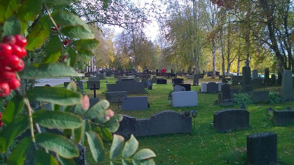 Nivalan hautausmaa, etualalla pihlajanoksa , hautakiviä ja taustalla ihmsiä.