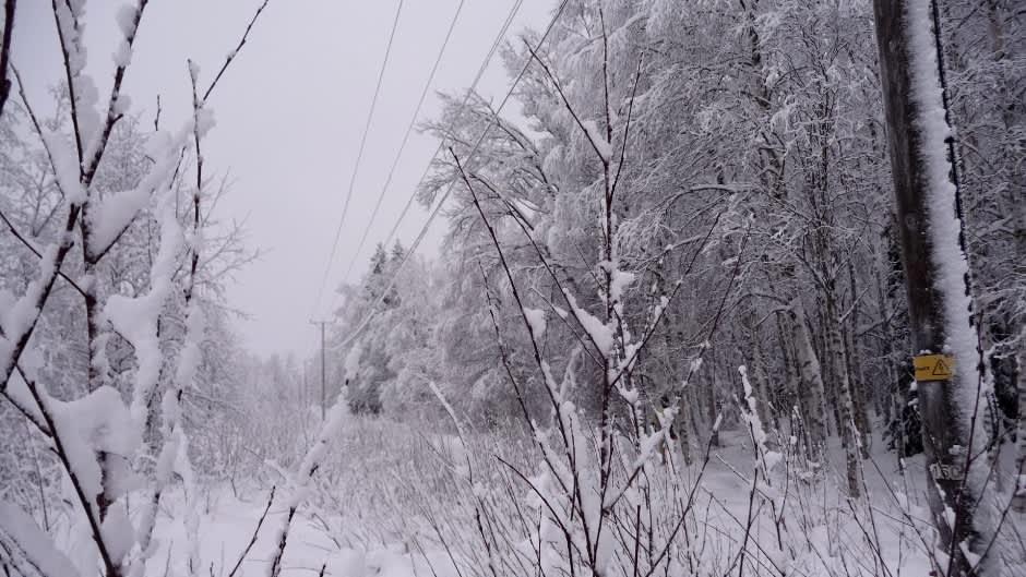 Lunta sähkölinjalla Keminmaassa.