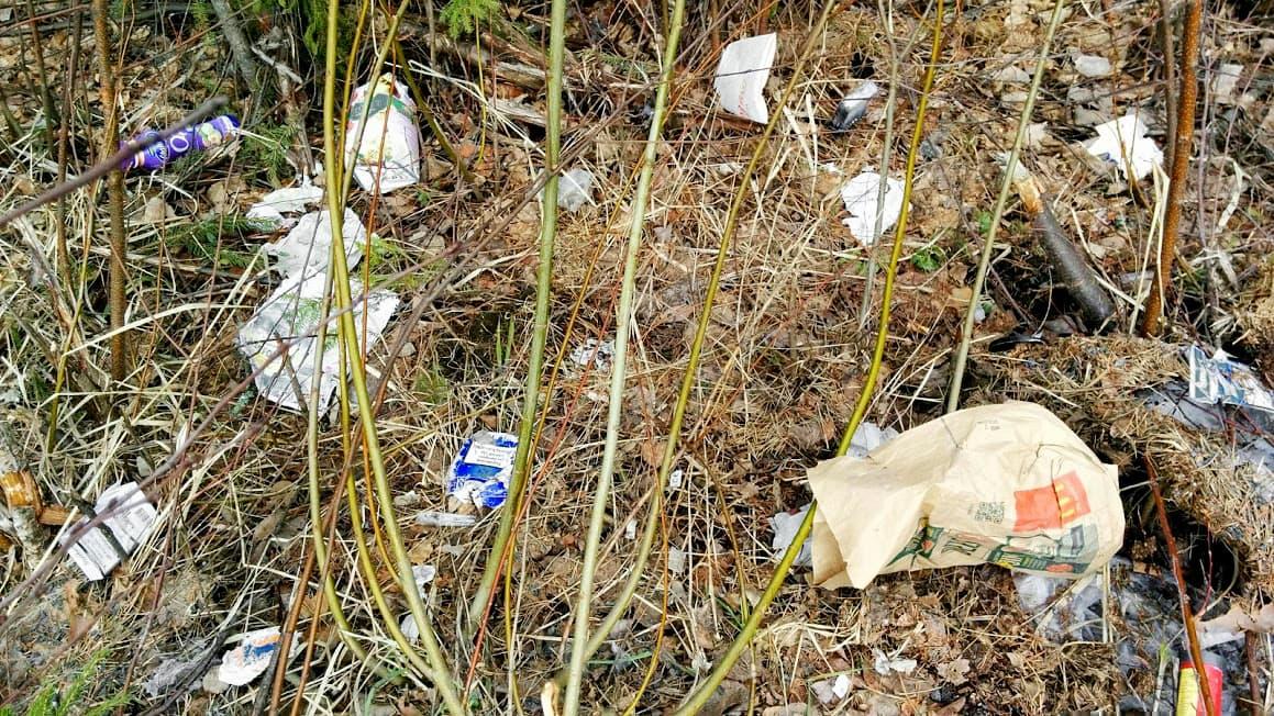 jätettä ja roskia metsän reunalla