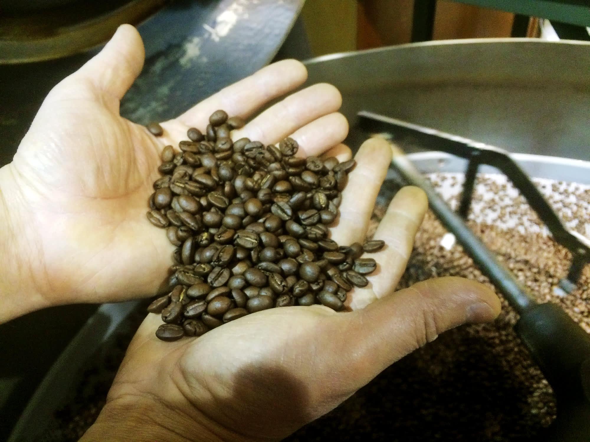 Kahvipapuja miehen käsissä
