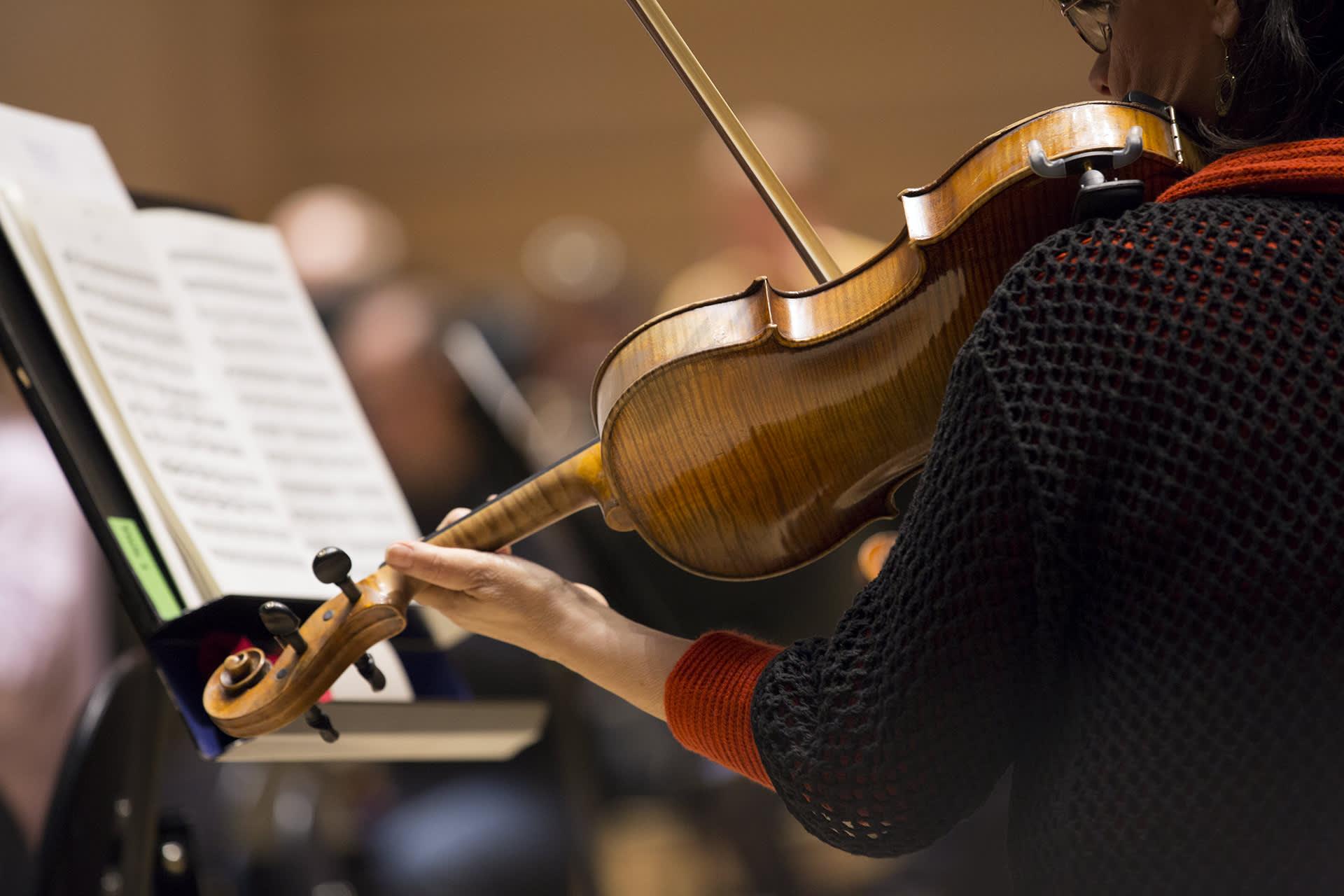 viulisti soittaa